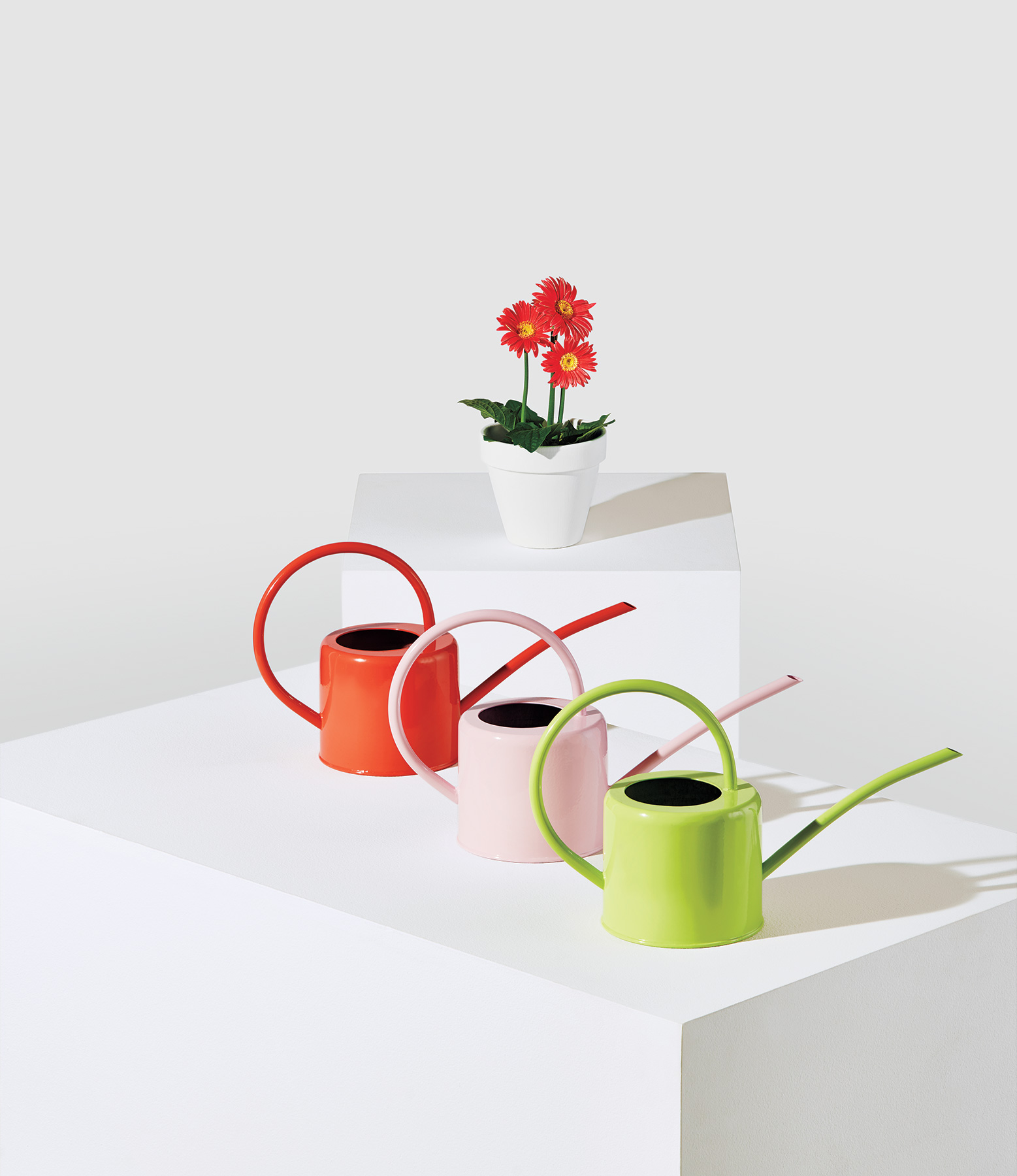 Popsicle Watering Cans