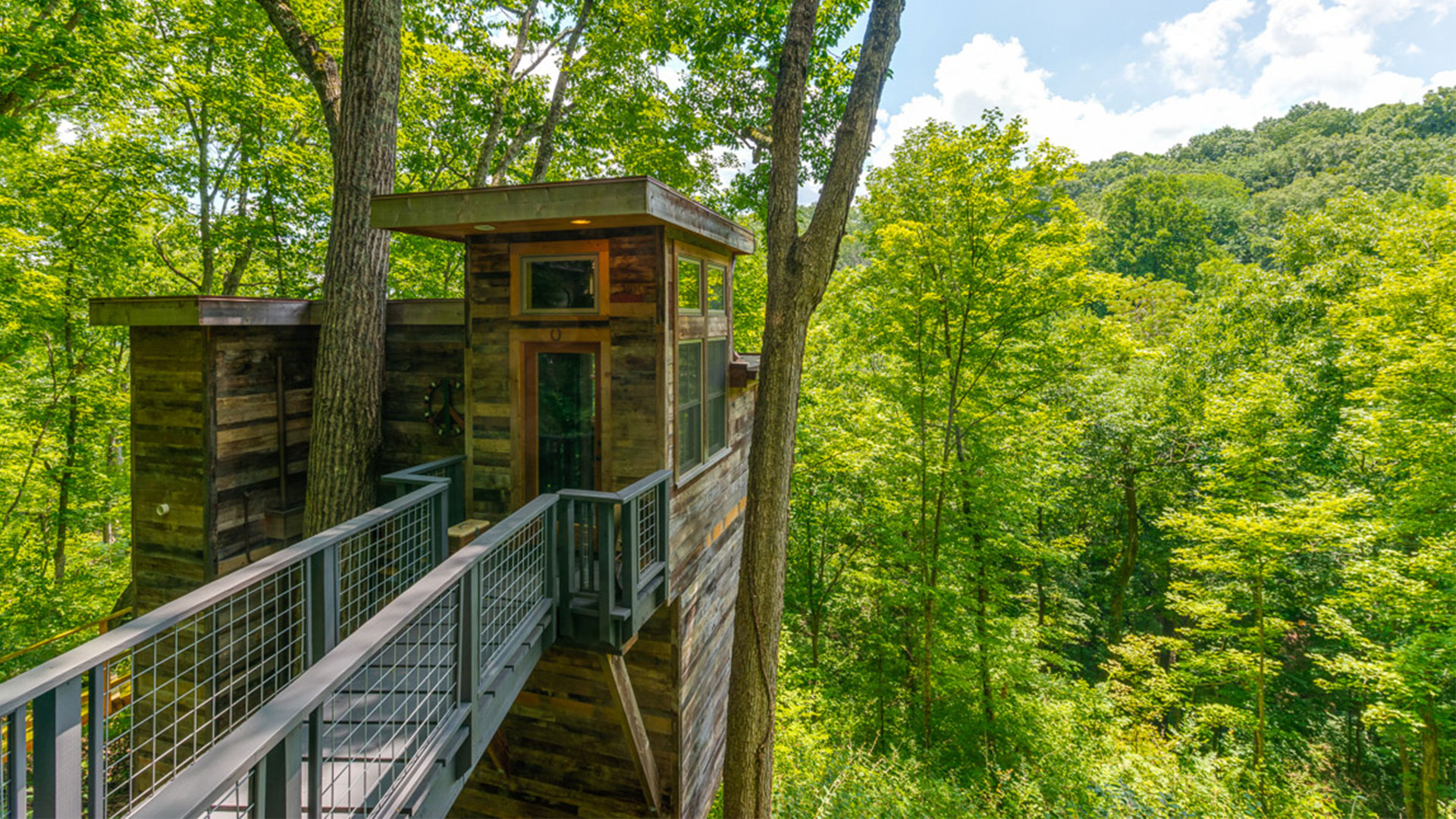 Brian Kelley Compound Treehouse