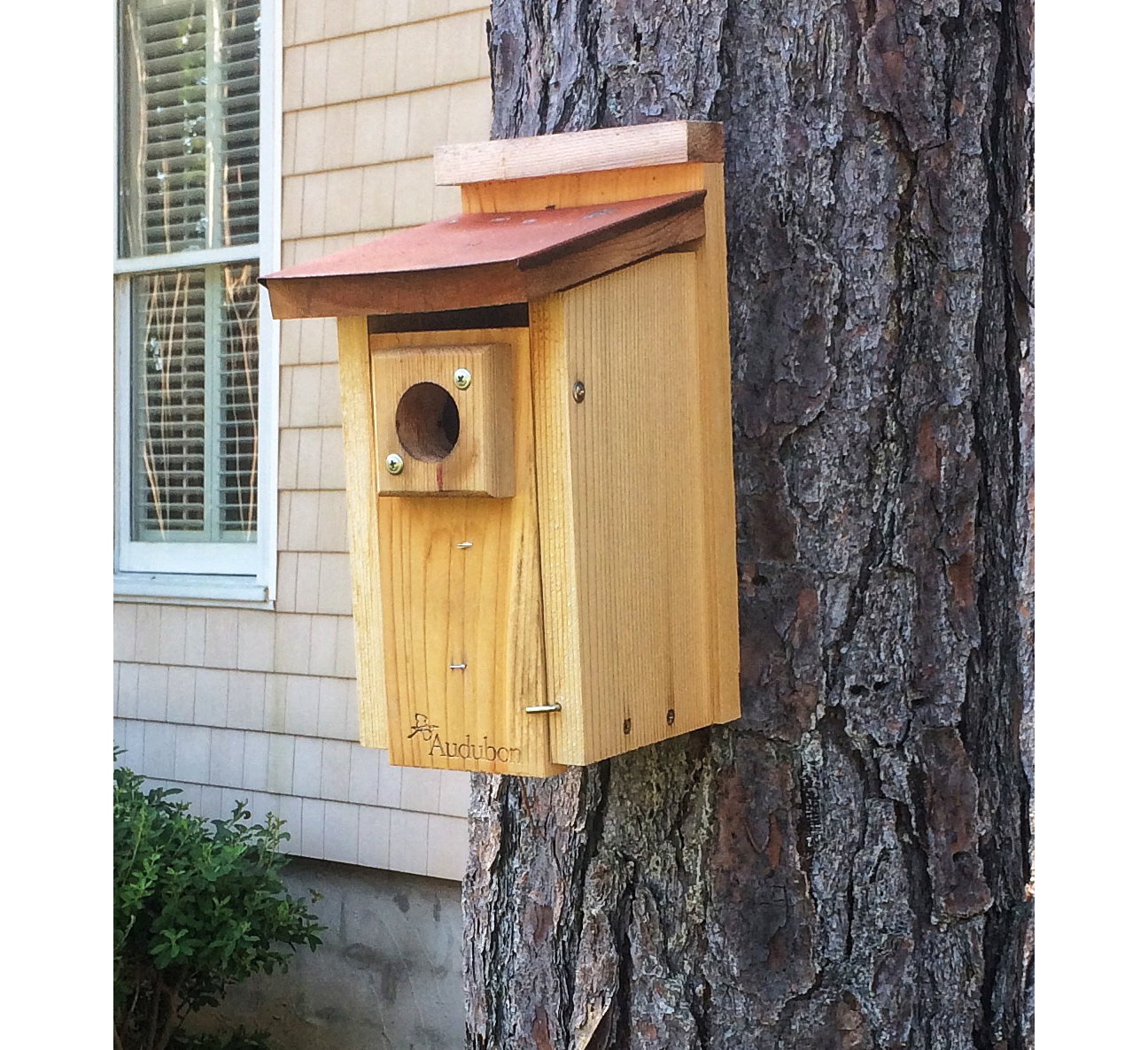 Grumpy's Bluebird House