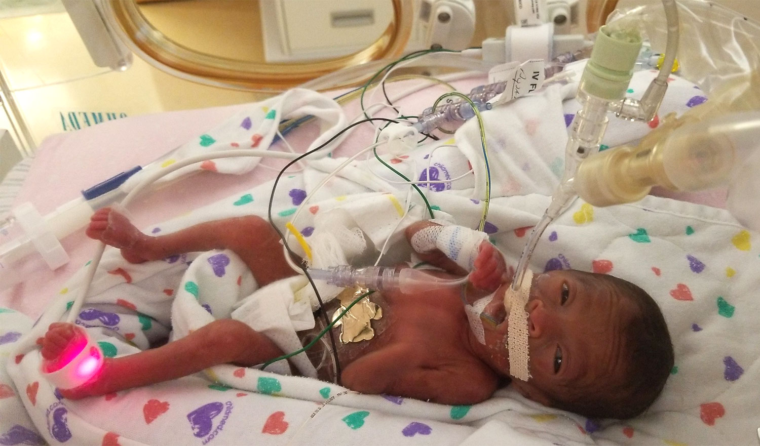 Hurricane Florence's Tiniest Evacuees Flown to Safety from the NICU Ahead of Storm nicu-babies-1