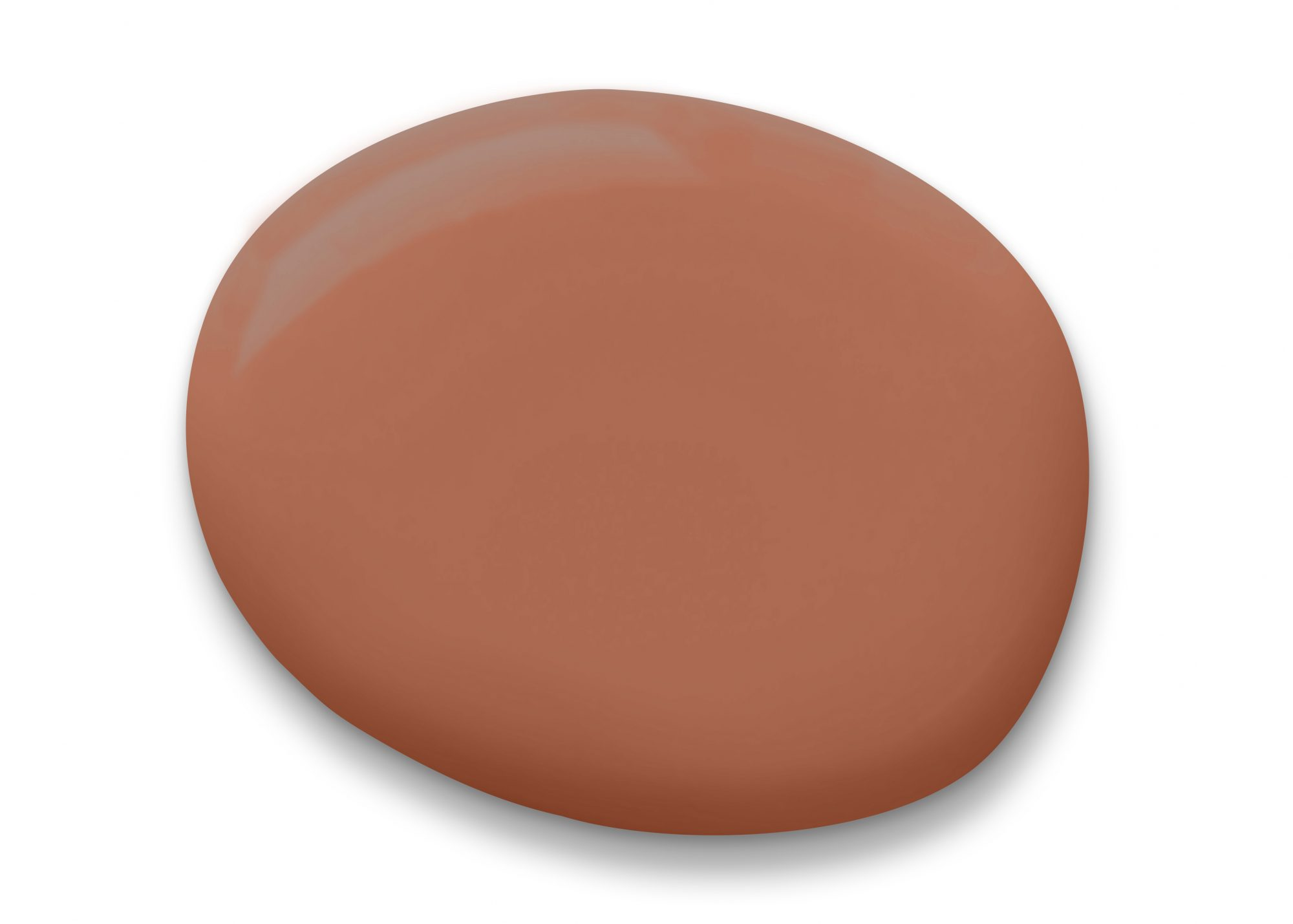 Sherwin Williams Cavern Clay Paint Drop