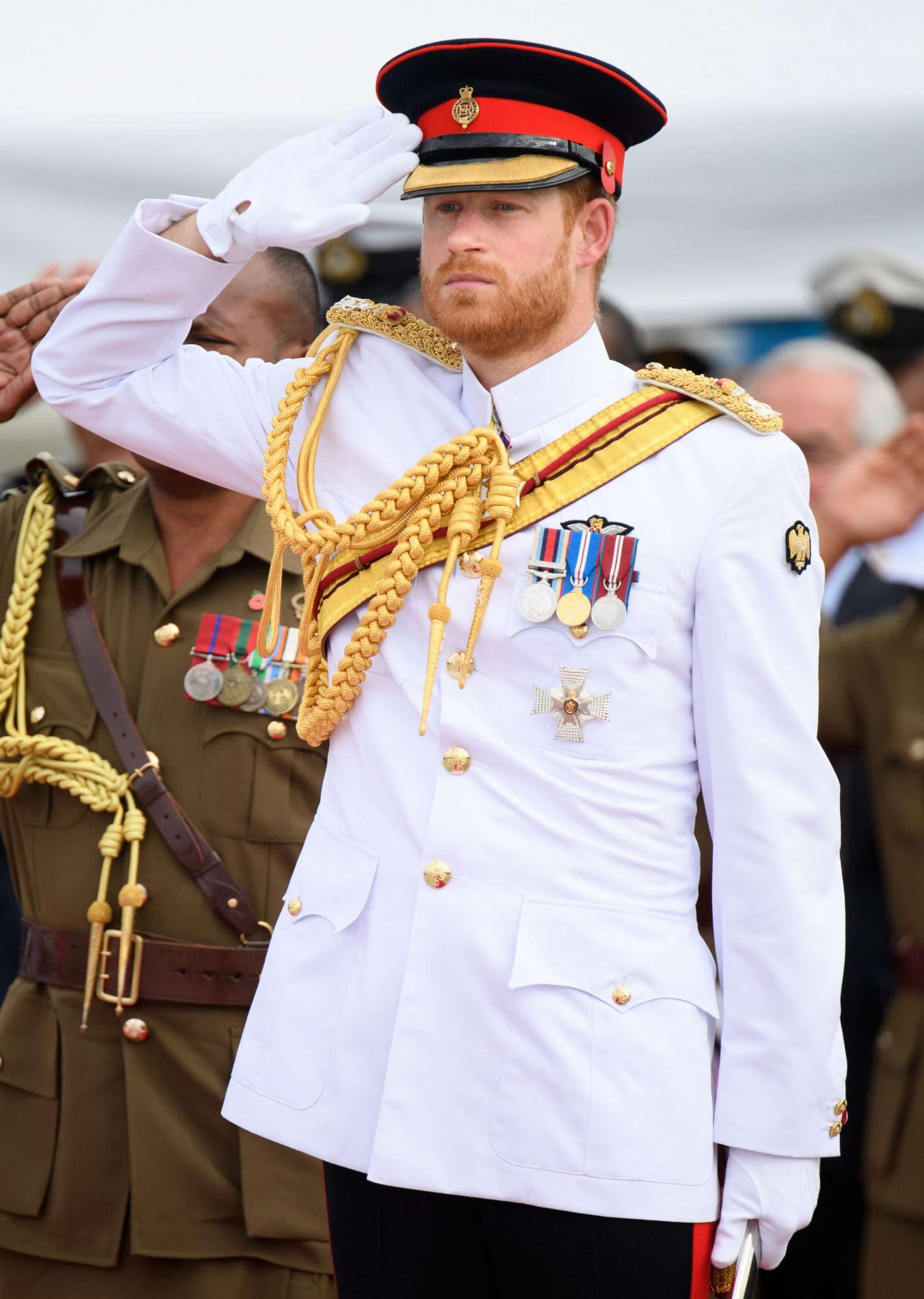 Prince Harry Fiji Tour