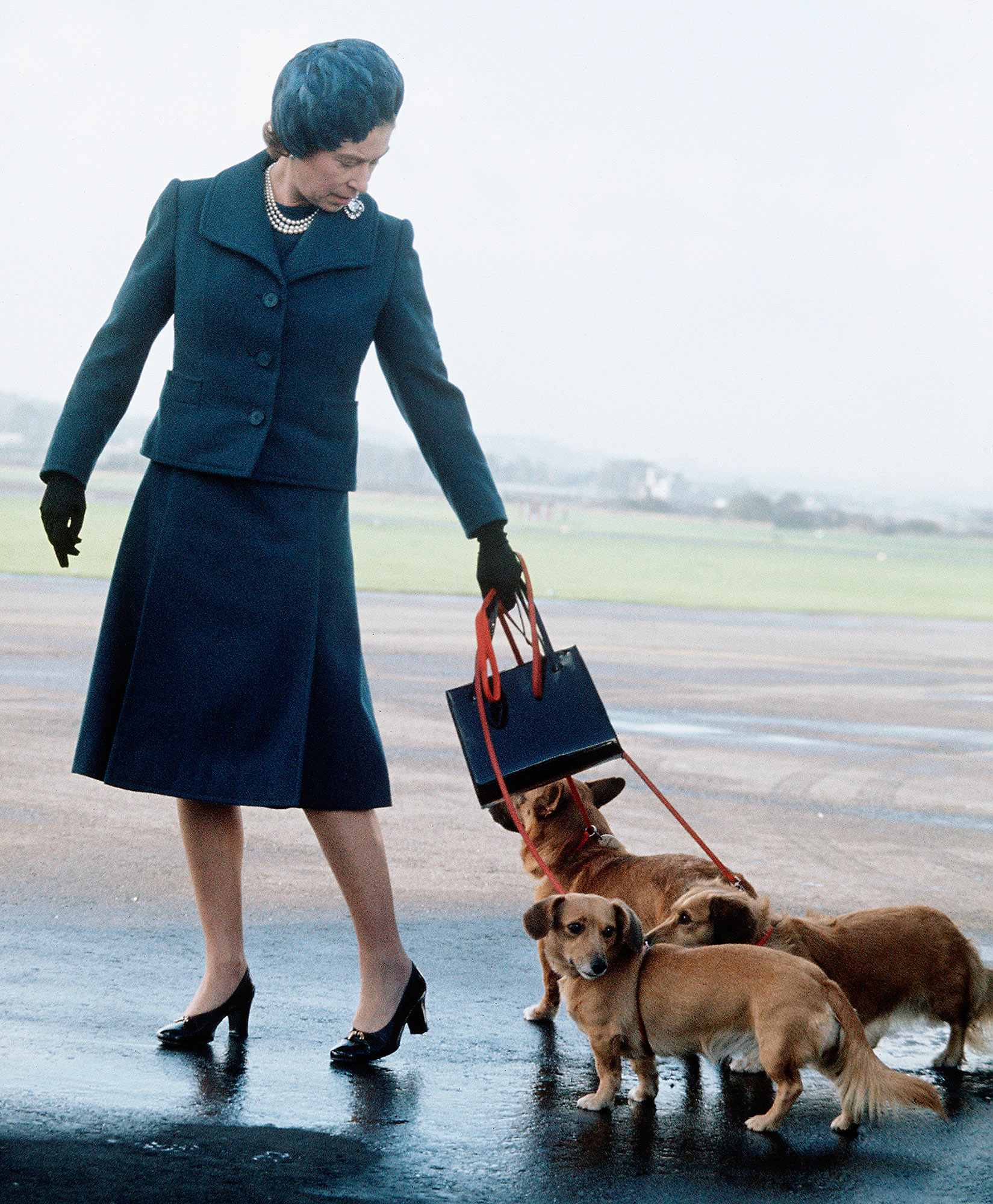 Queen Elizabeth's Last Corgi, Whisper, Has Died at Windsor Castle