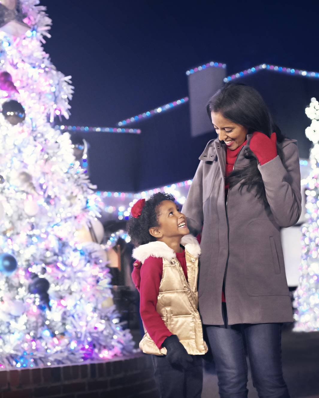 SeaWorld San Antonio Christmas Celebration in San Antonio, Texas