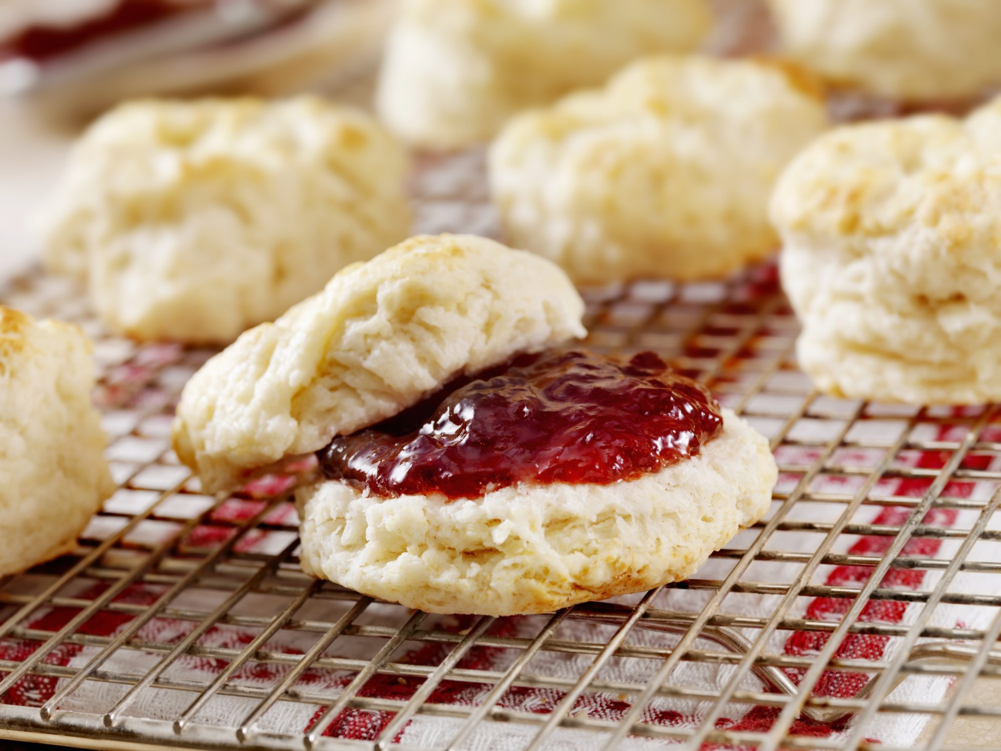 jelly biscuit