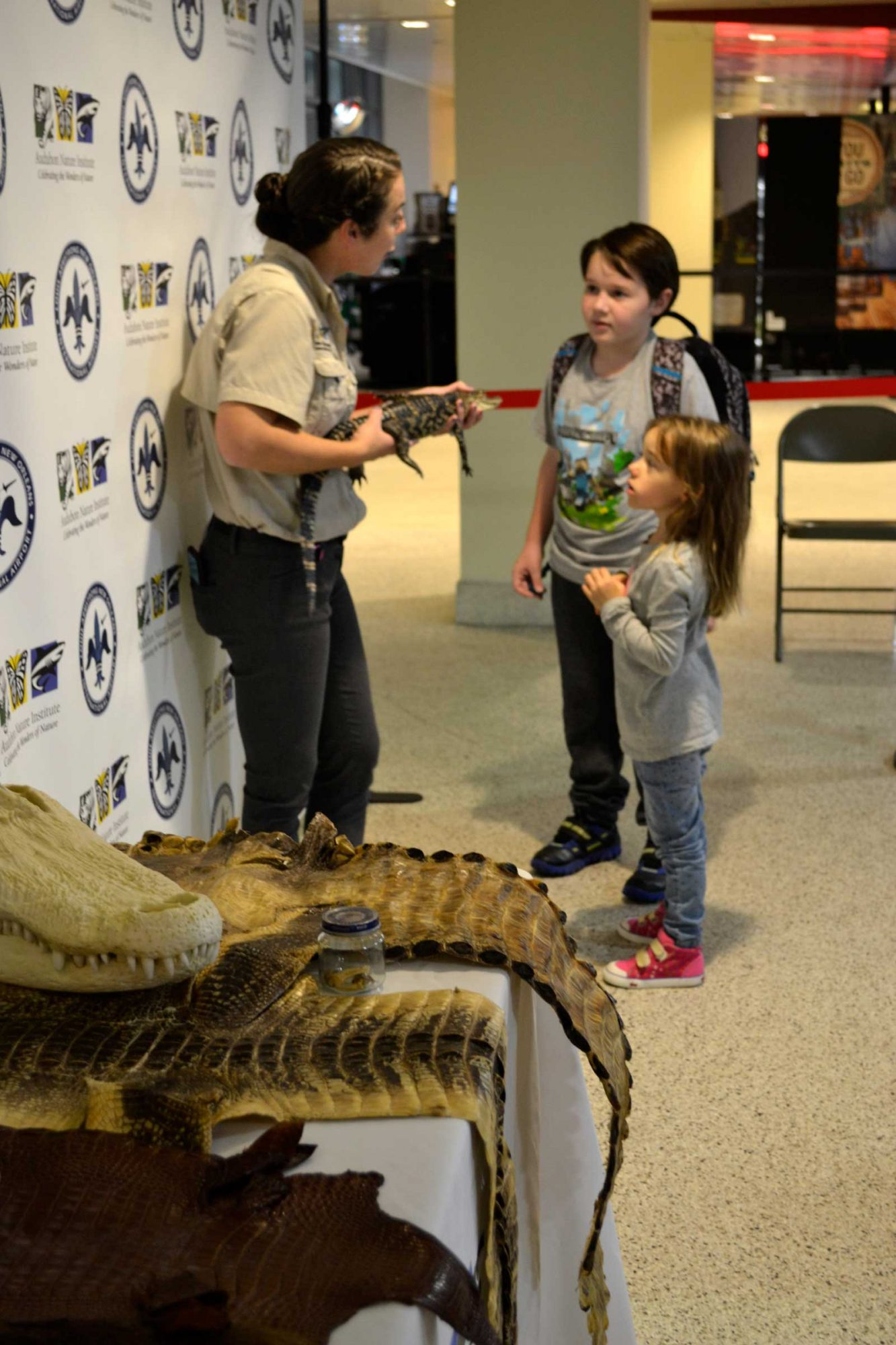 New Orleans Airport, Alligator Experiences