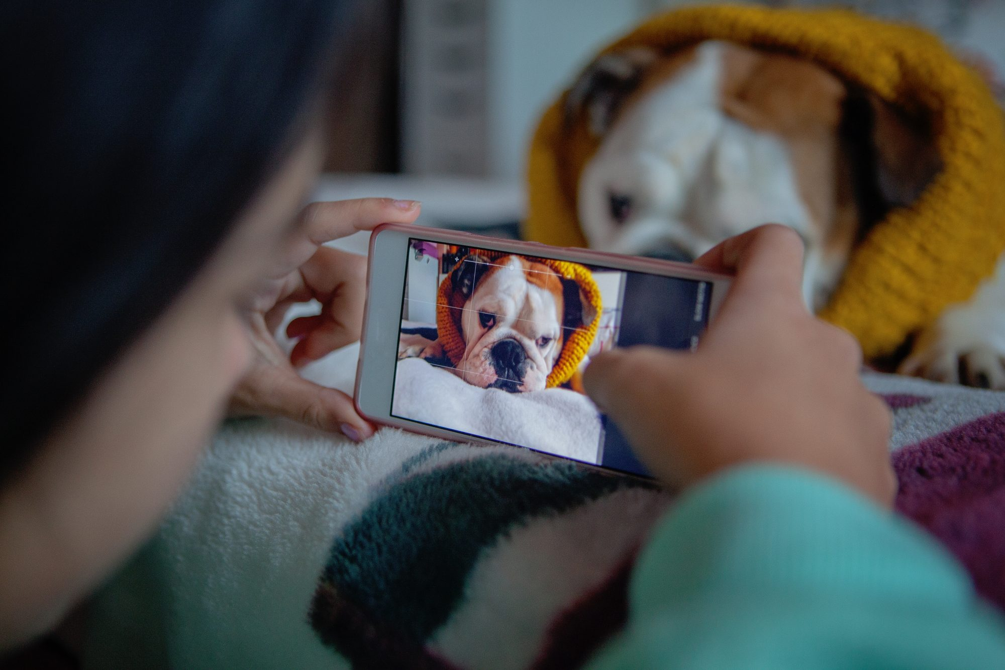 Dog Owners Take More Photos of Their Pups Than Their Spouse, Says Study
