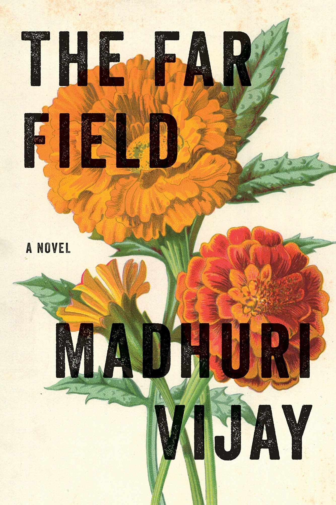 The Far Field by Madhuri Vijay