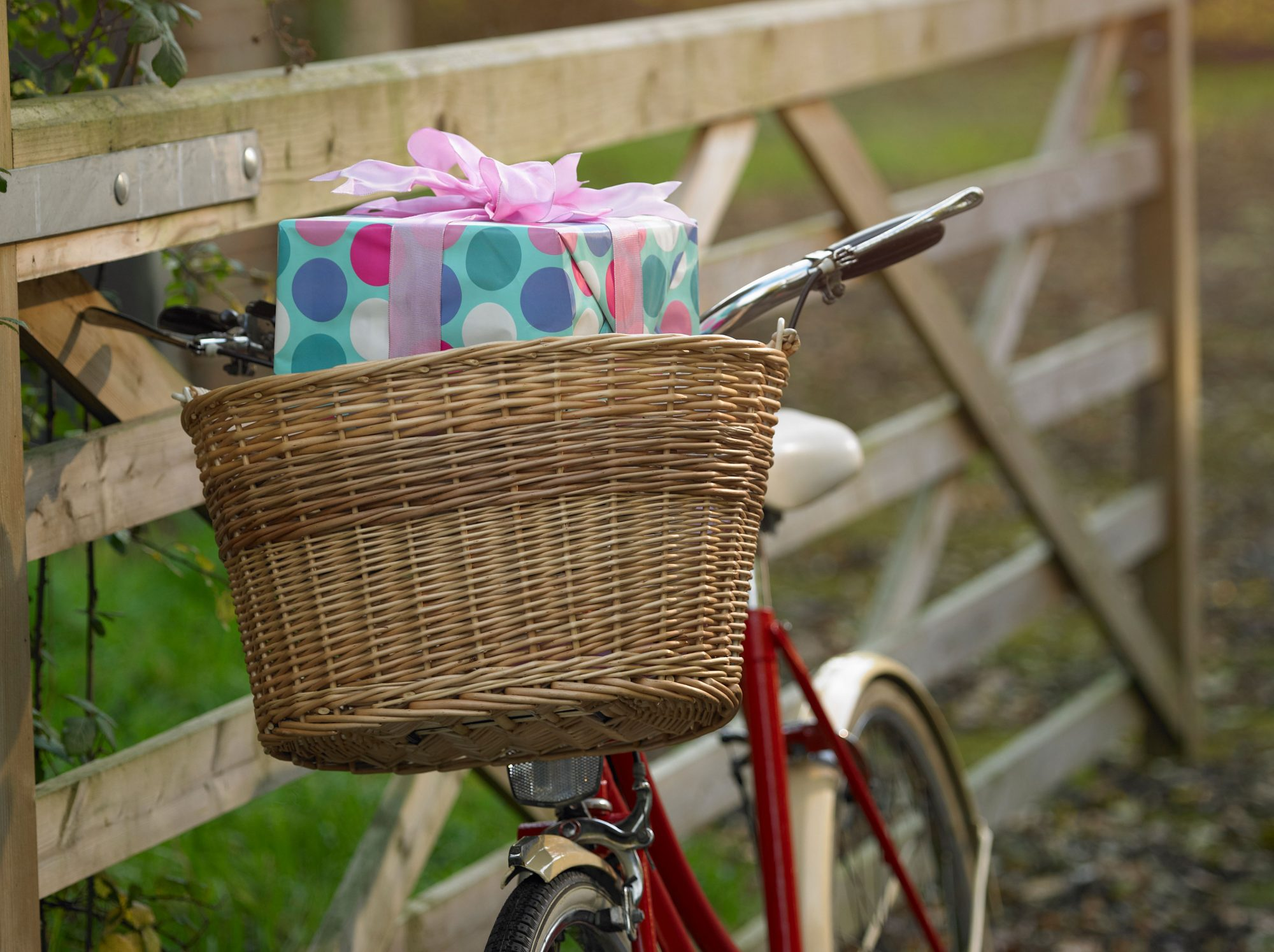 Bike with Birthday Gift in Basket