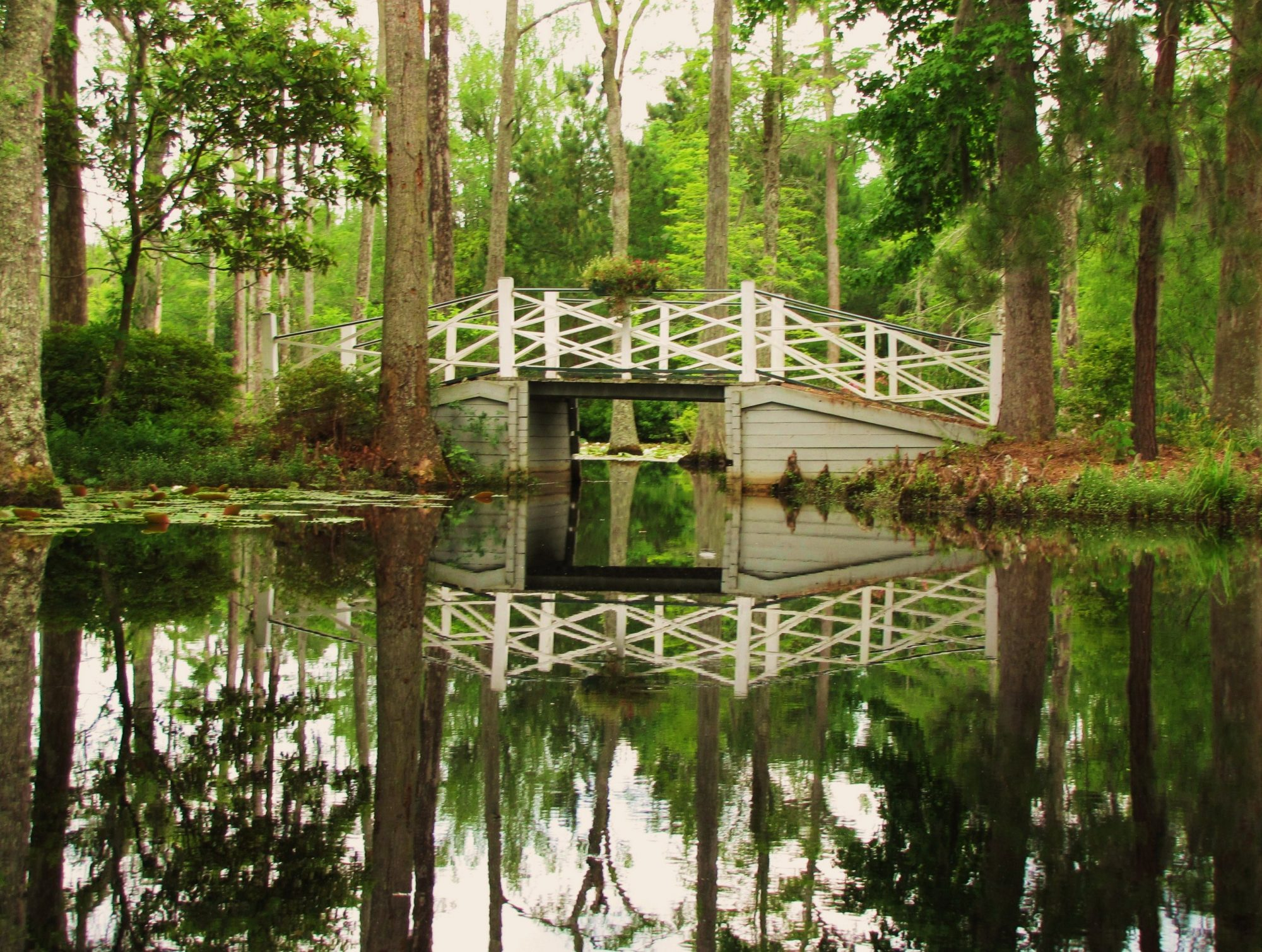 Cypress Gardens in Charleston, SC