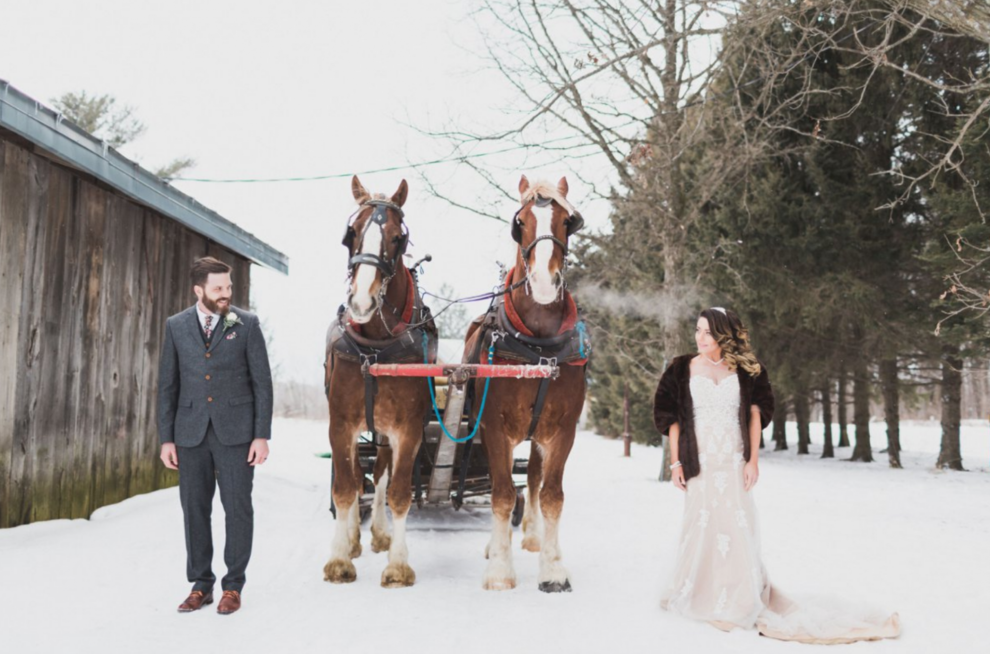 Send the Newlyweds Off with a Sleigh Ride