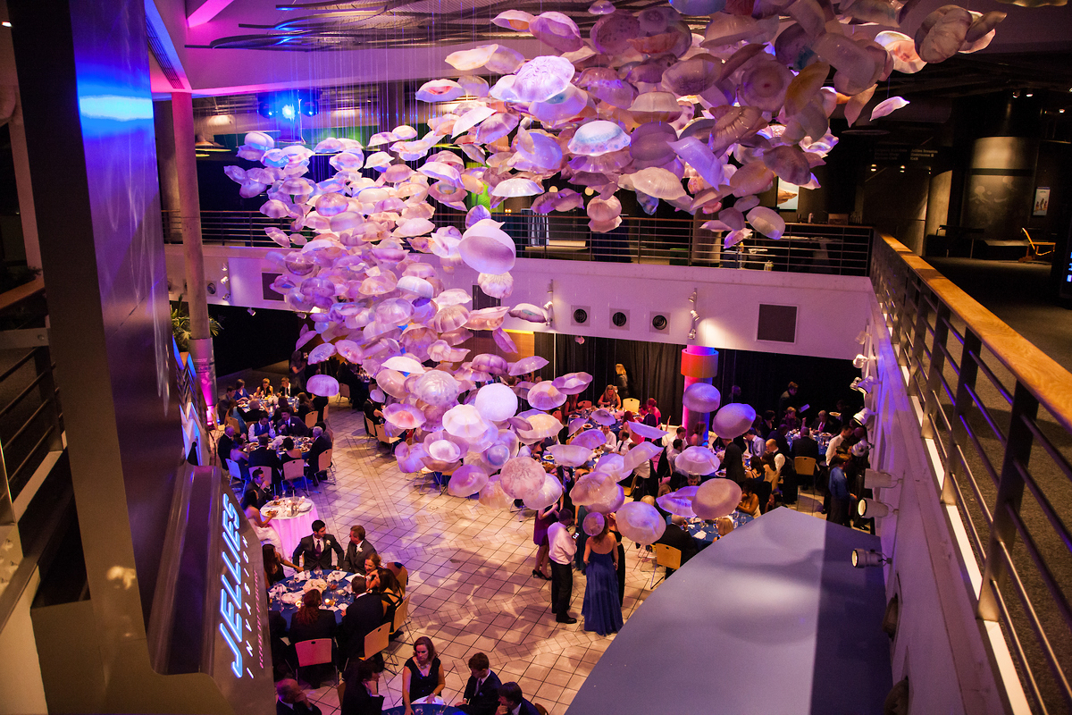 National Aquarium Wedding Venue in Maryland