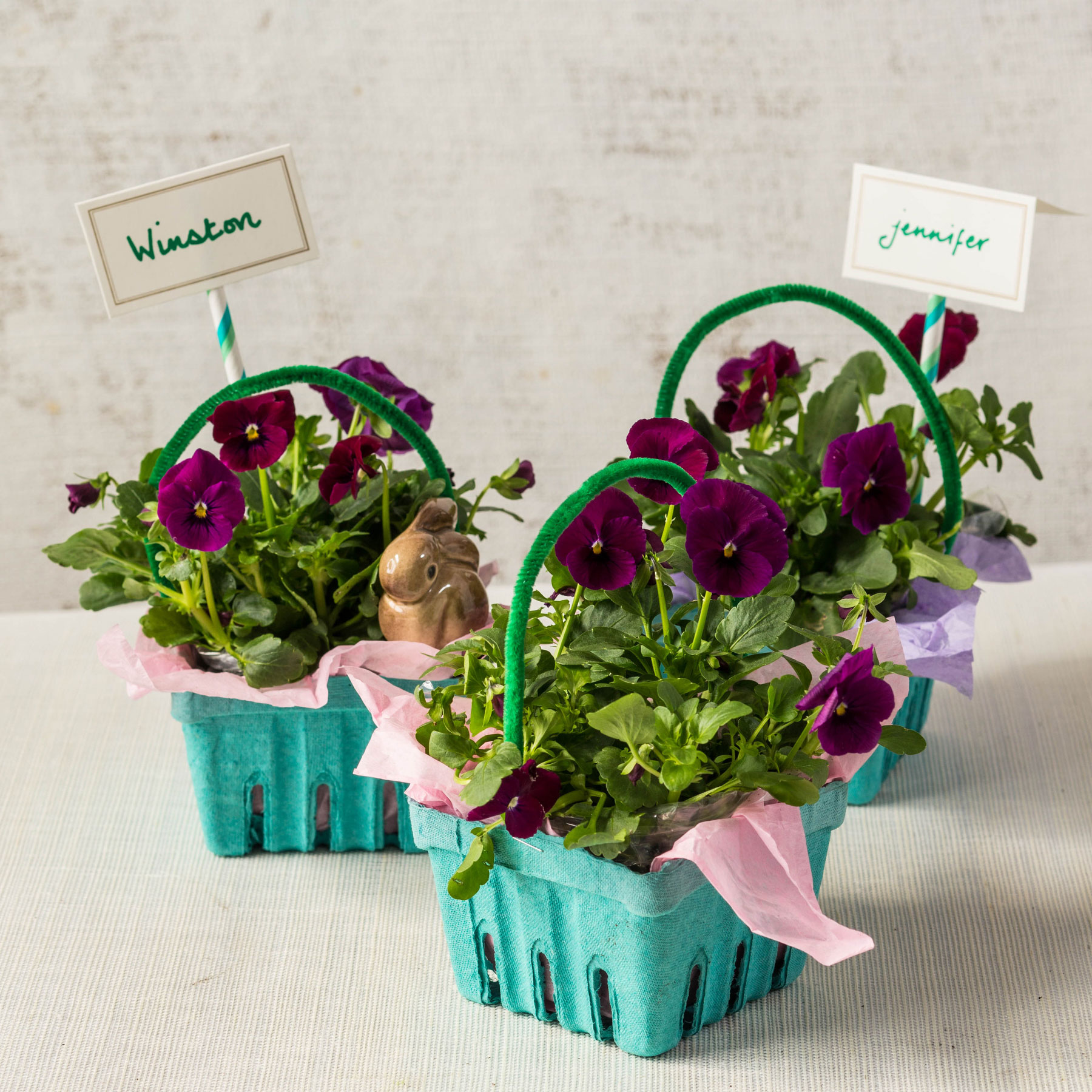 Easter Egg Carton Planter