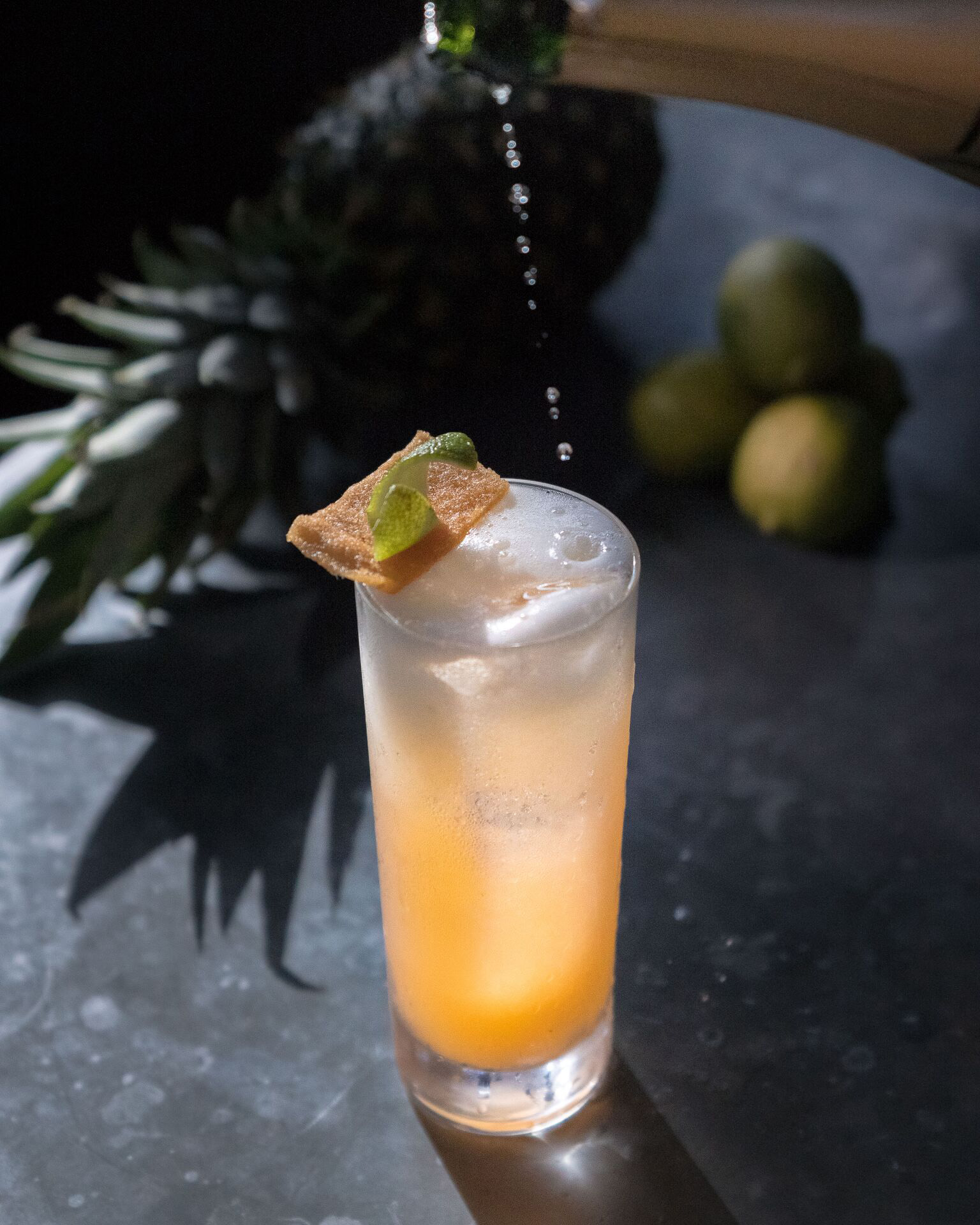 Ice Plant Bar Signature Drink (Tiempo de Fiesta Excellente)