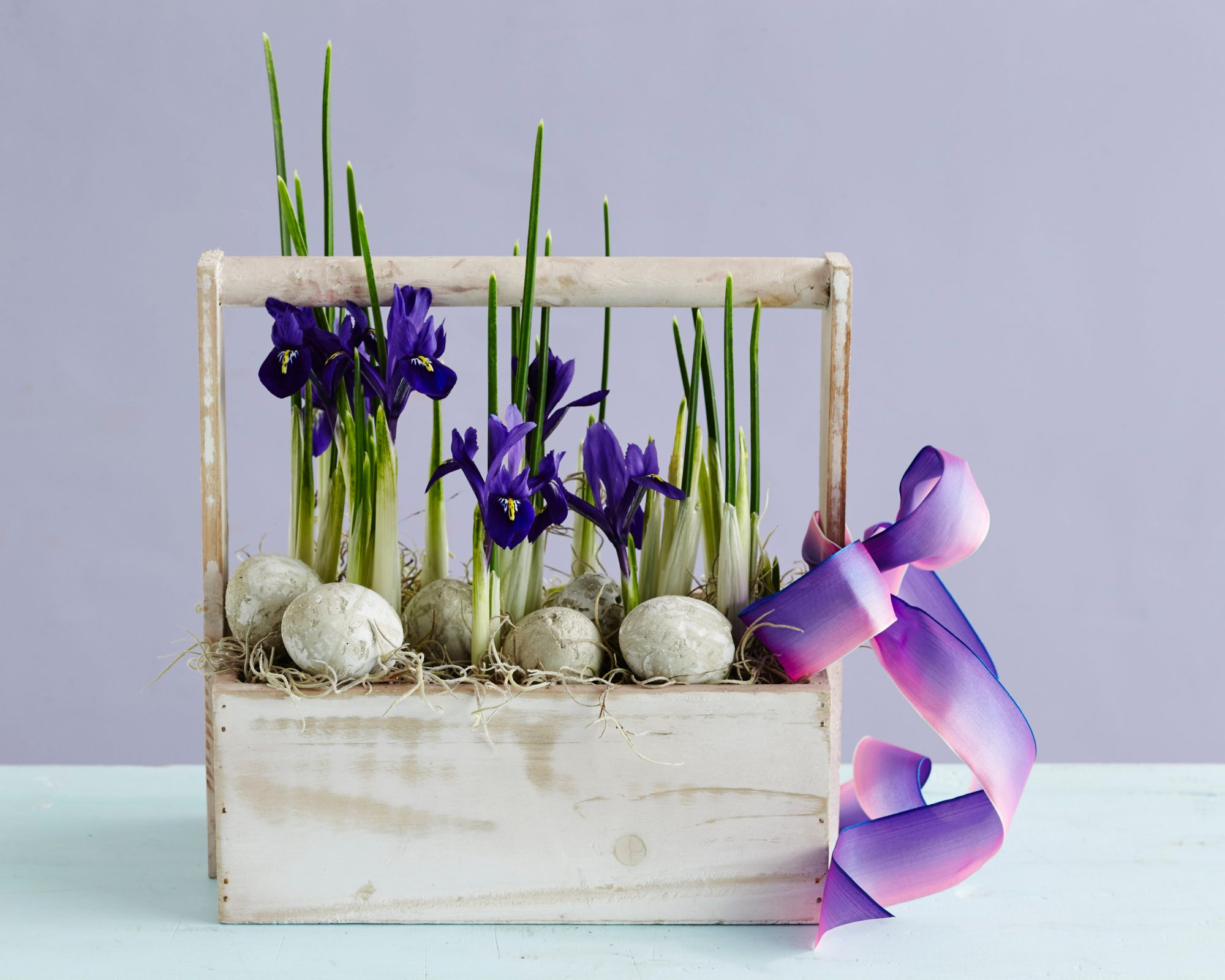 The No-Arranging Iris Arrangement