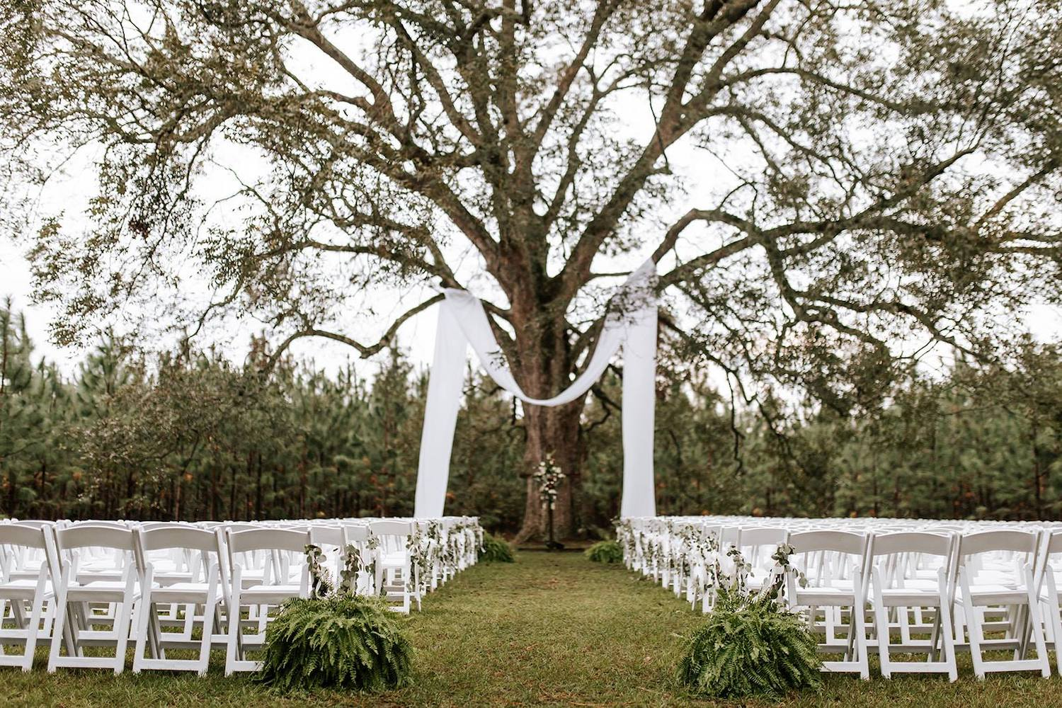 Twin Oaks Farm Georgia Wedding Venue Pecan Tree Ceremony