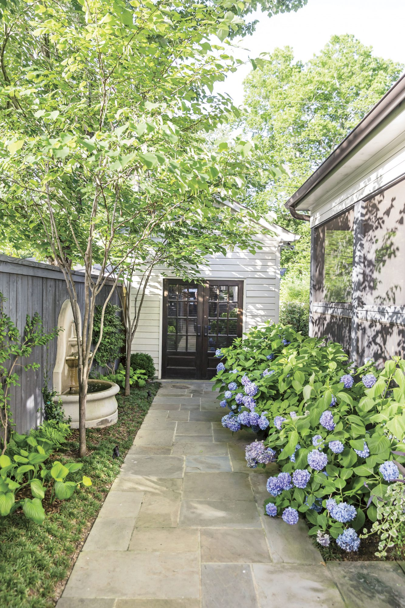 Side Yard Walkway with Endless Summer Hydrangeas in Birmingham, AL Garden