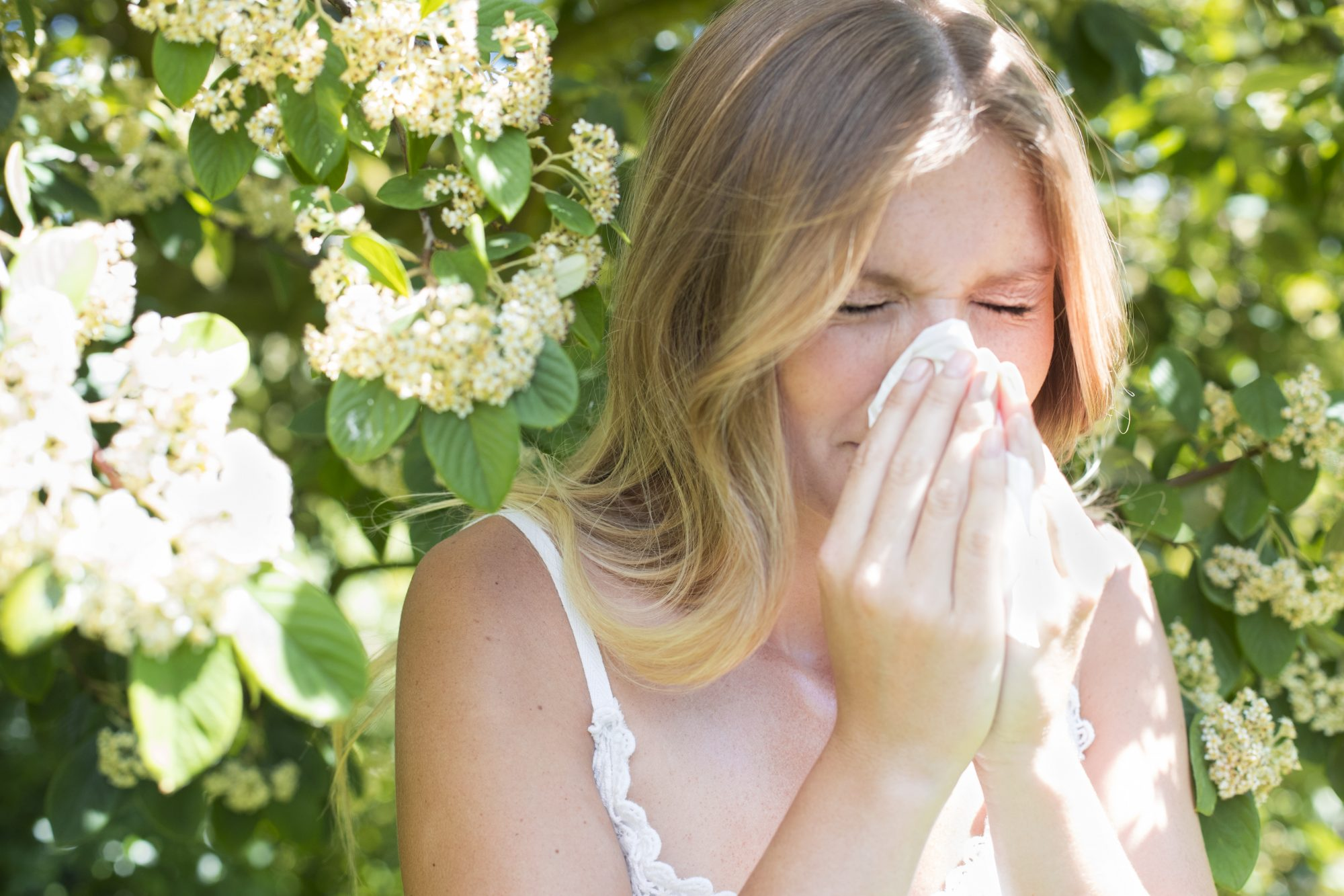 Woman Blowing Nose Under Tree