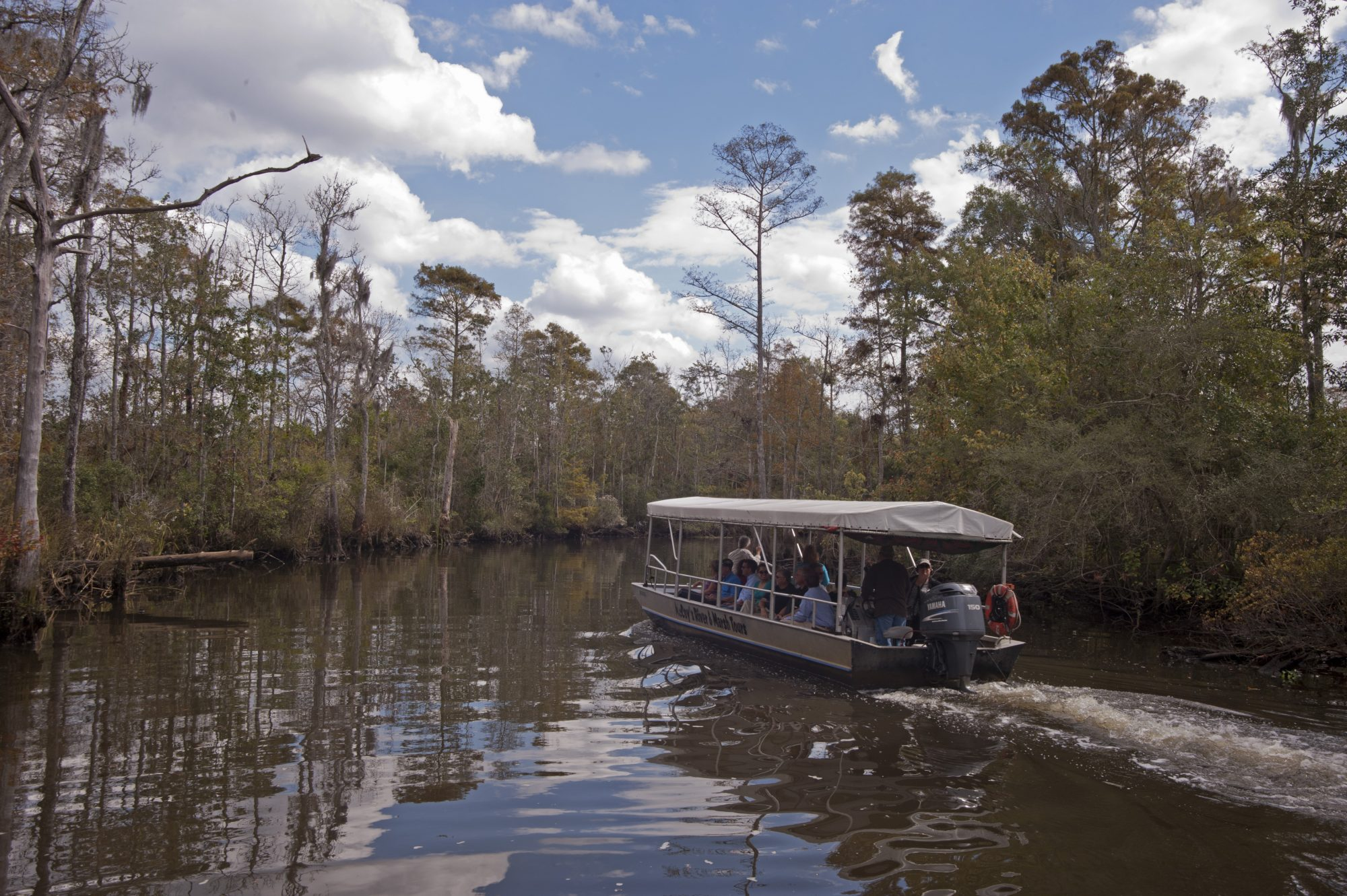 McCoy's River & Swamp Tours (Moss Point, Mississippi)