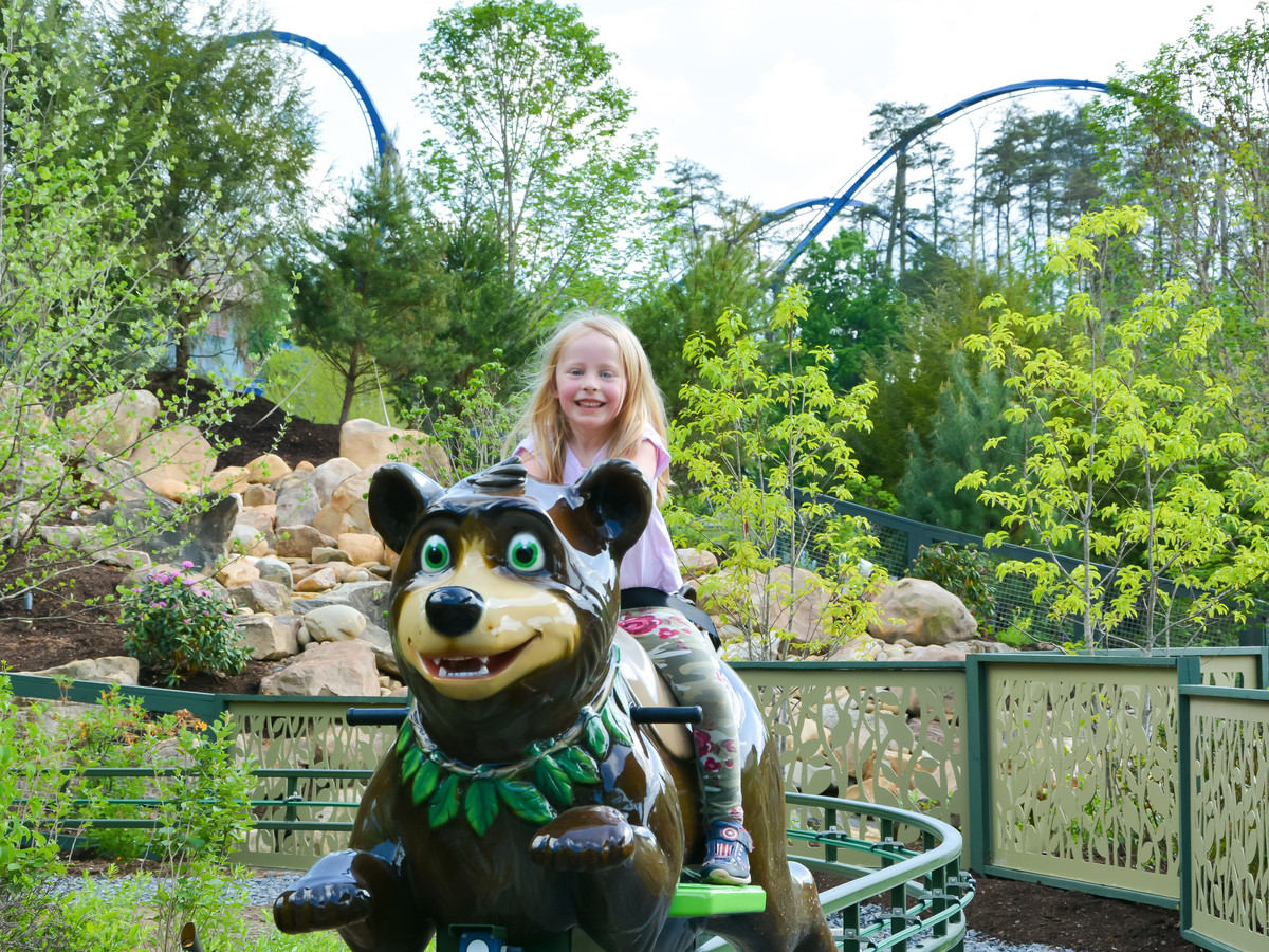 Dollywood Black Bear Ride