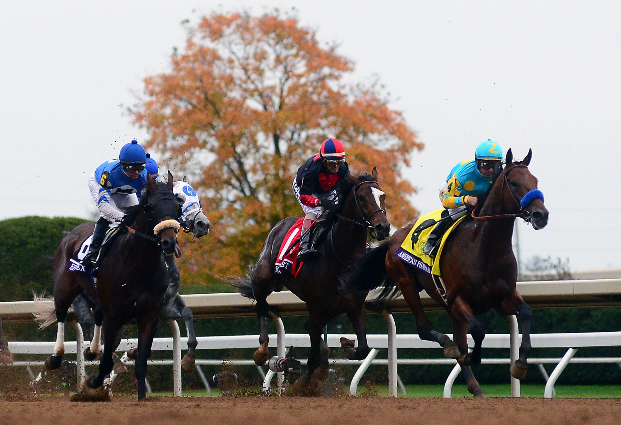 Keeneland Horse Race in Lexington, Kentucky