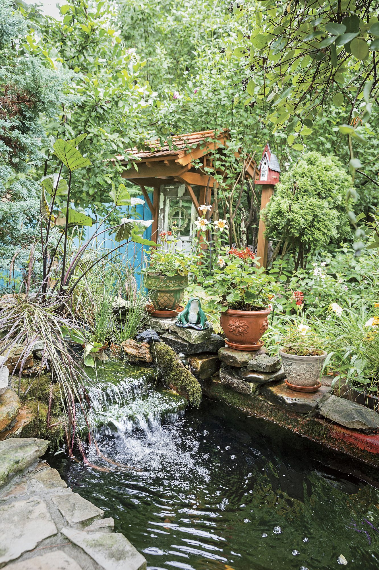 Mary Startzman Garden in Berea, Kentucky with Koi Pond and Waterfall
