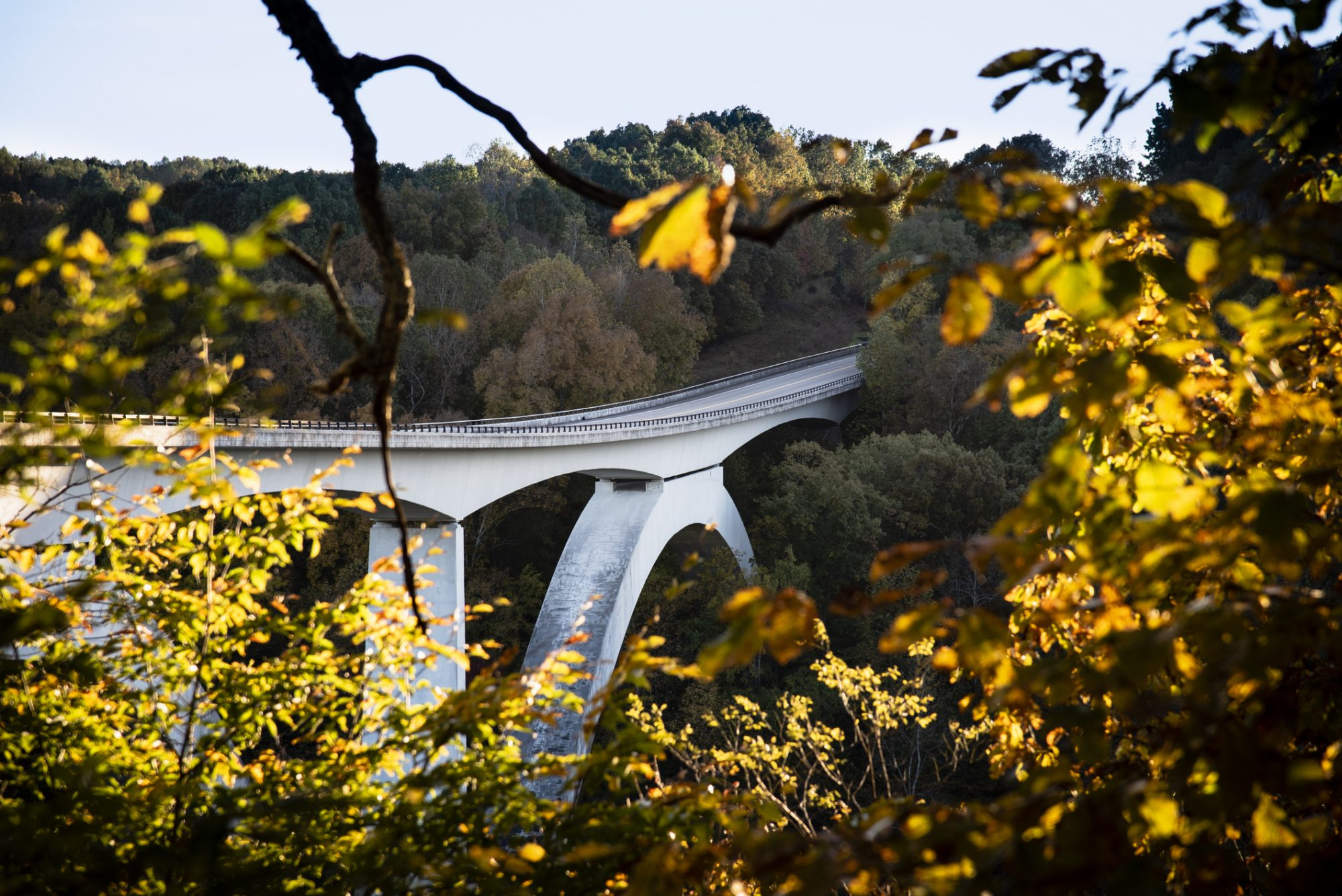 natchez-trace-state-parkway-tennessee-fall-foliage