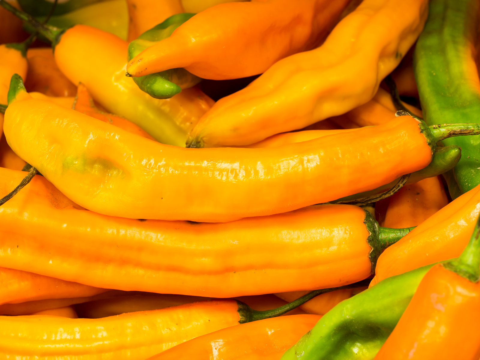 peruvian peppers