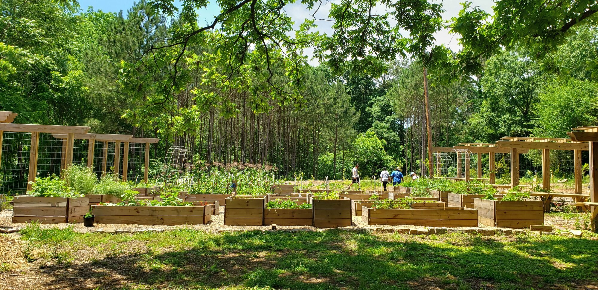 Action Alert Save Urban Forests Now American Forests >> Atlanta Just Planted A Massive Edible Garden Southern Living