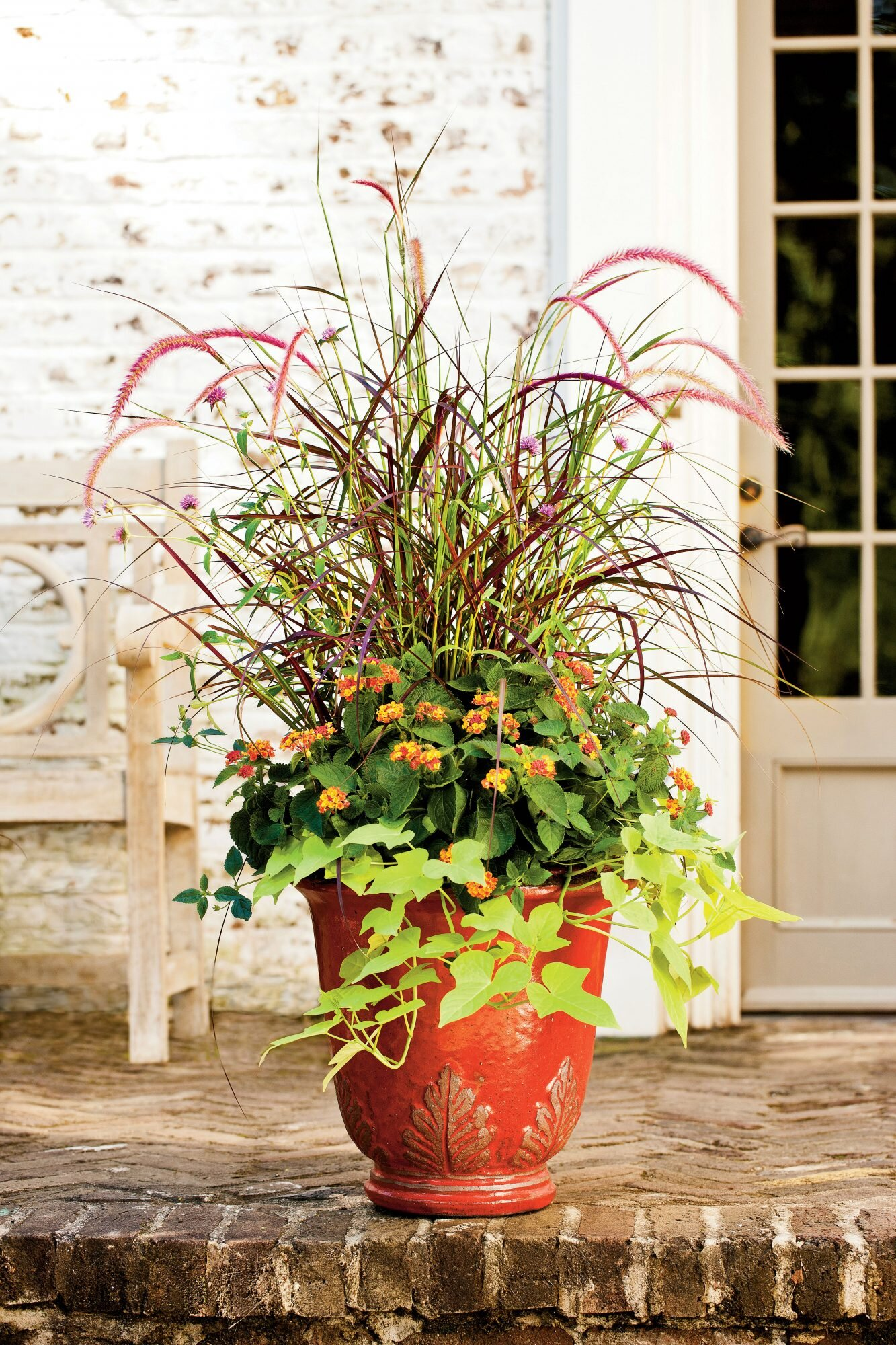 125 Container Gardening Ideas on backyard urn ideas, backyard patio ideas, cheap retaining wall ideas, backyard rose ideas, diy flower garden design ideas, backyard fence ideas, backyard gift ideas, tropical landscape patio design ideas, backyard outdoor ideas, backyard wood ideas, backyard landscaping ideas, back yard landscaping design ideas, backyard shelf ideas, small backyard ideas, outdoor flower pot decorating ideas, backyard plant ideas, backyard statue ideas, backyard bed ideas, backyard light ideas, backyard flowers ideas,