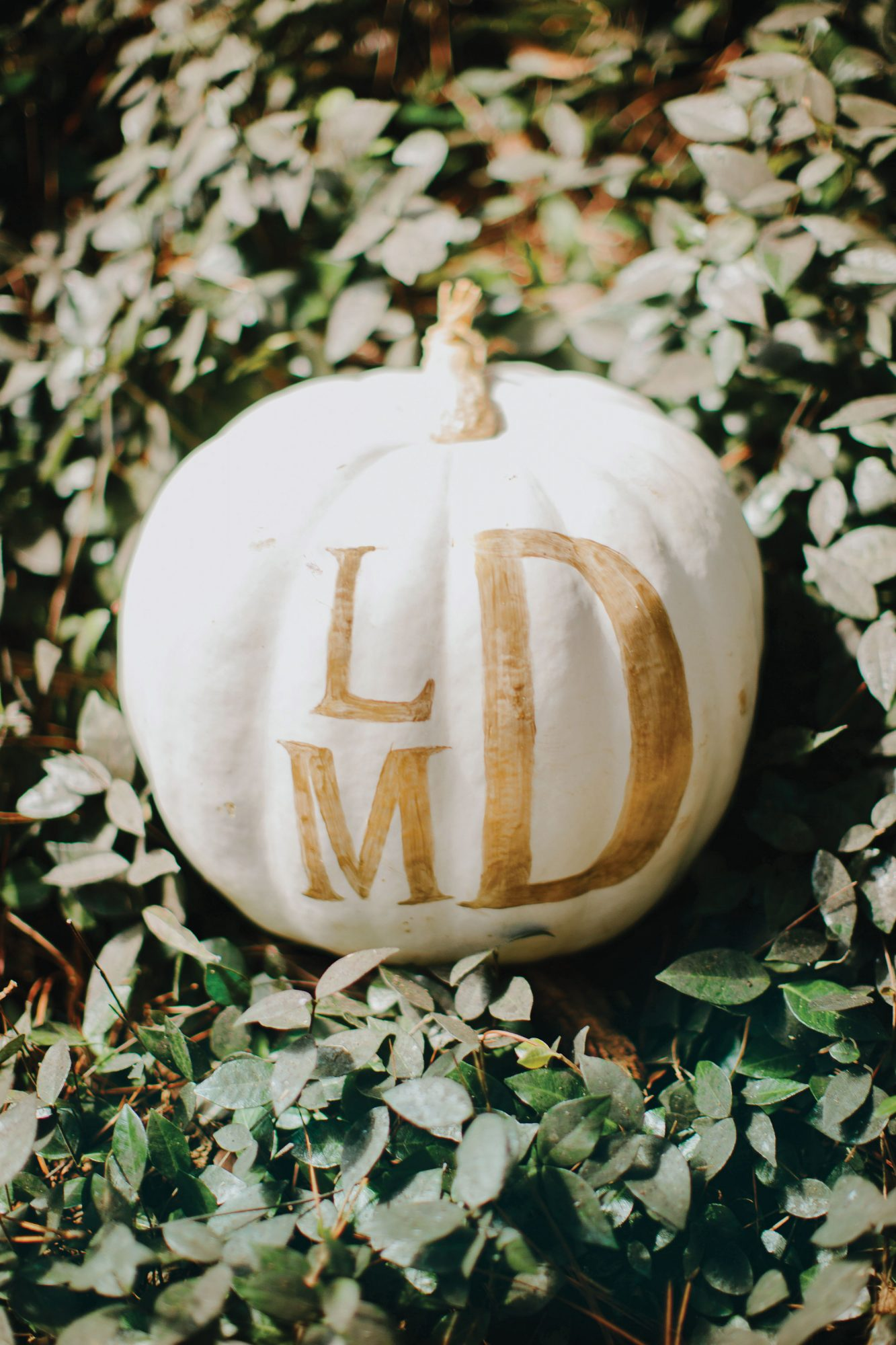 Monogramed Pumpkin Decoration Wedding