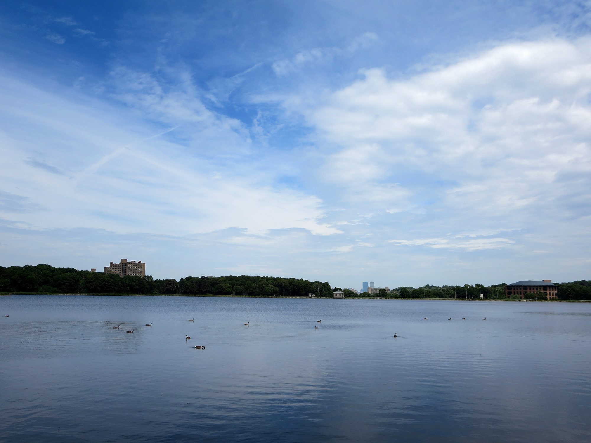 Chestnut Hill Reservoir