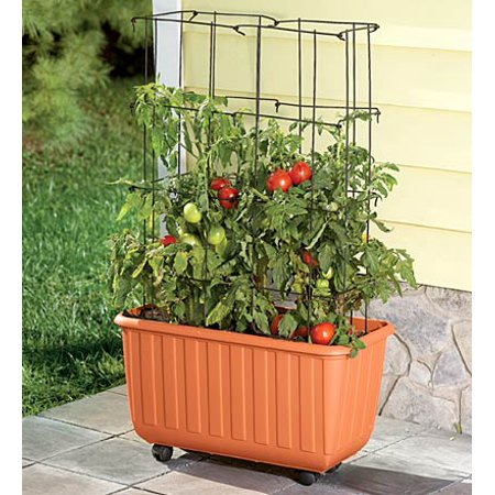 Rolling Self-Watering Tomato Planter with Metal Trellis
