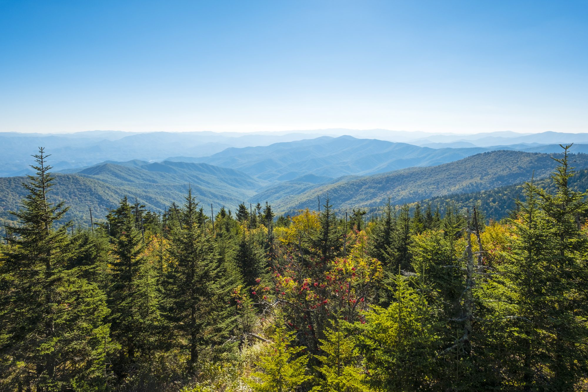 Great Smoky Mountains National Park, Clingmans Dome