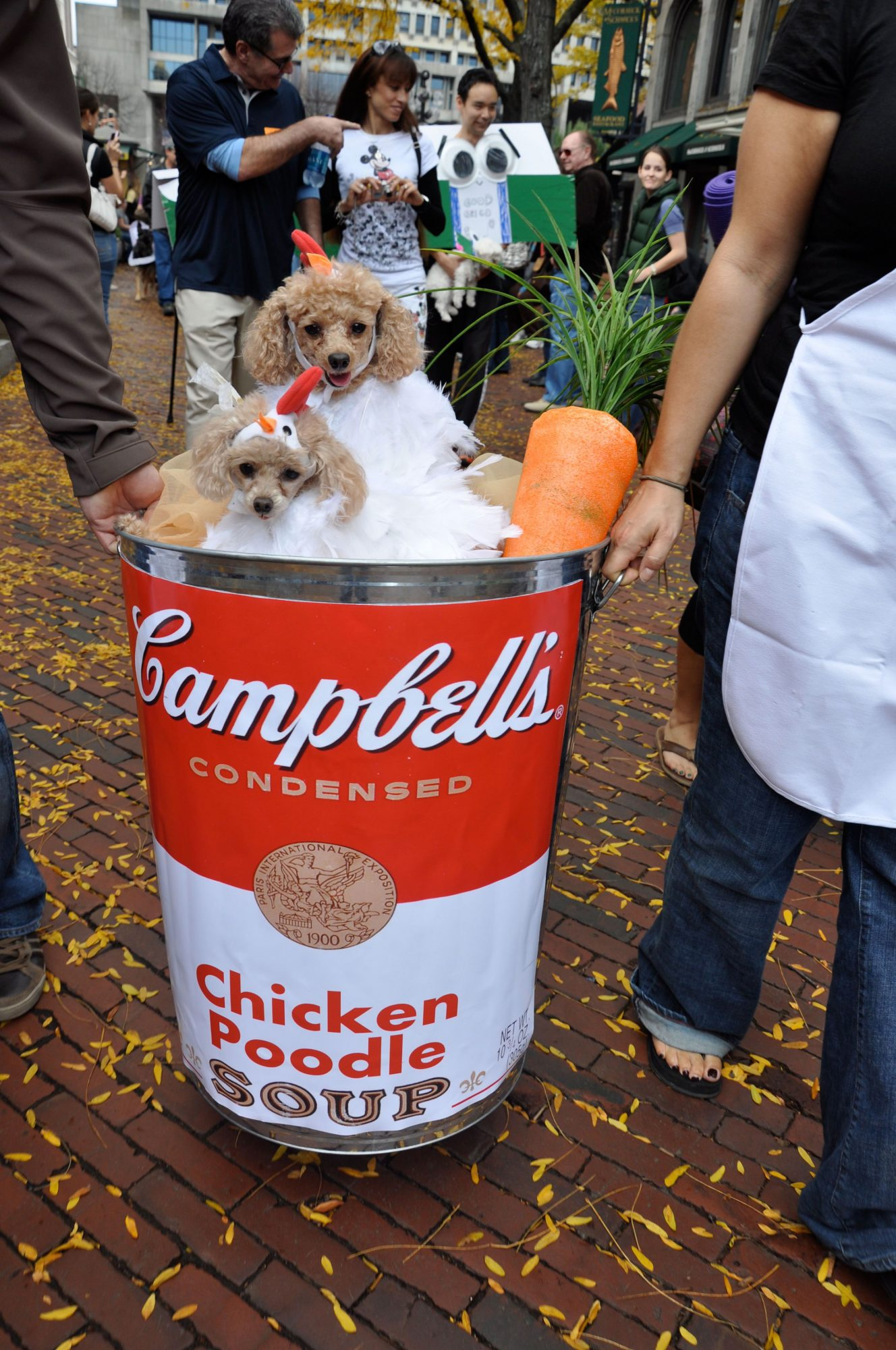 """Chicken """"Poodle"""" Soup Dog Costume"""