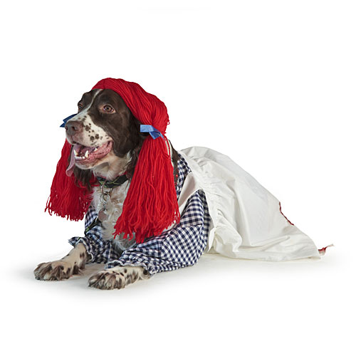 Raggedy Ann Dog Costume