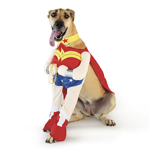 Wonder Woman Dog Costumes