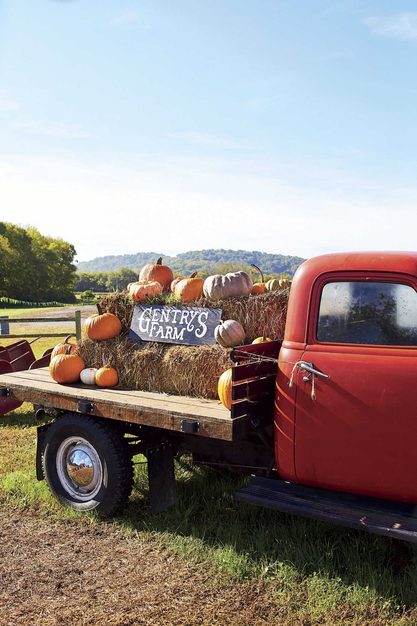 Katie Jacobs Fall Tailgate a Gentry Farm Pumpkin Patch
