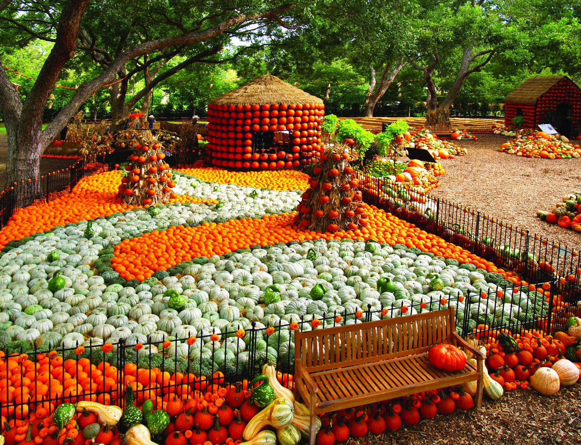 90,000 Pumpkin Village