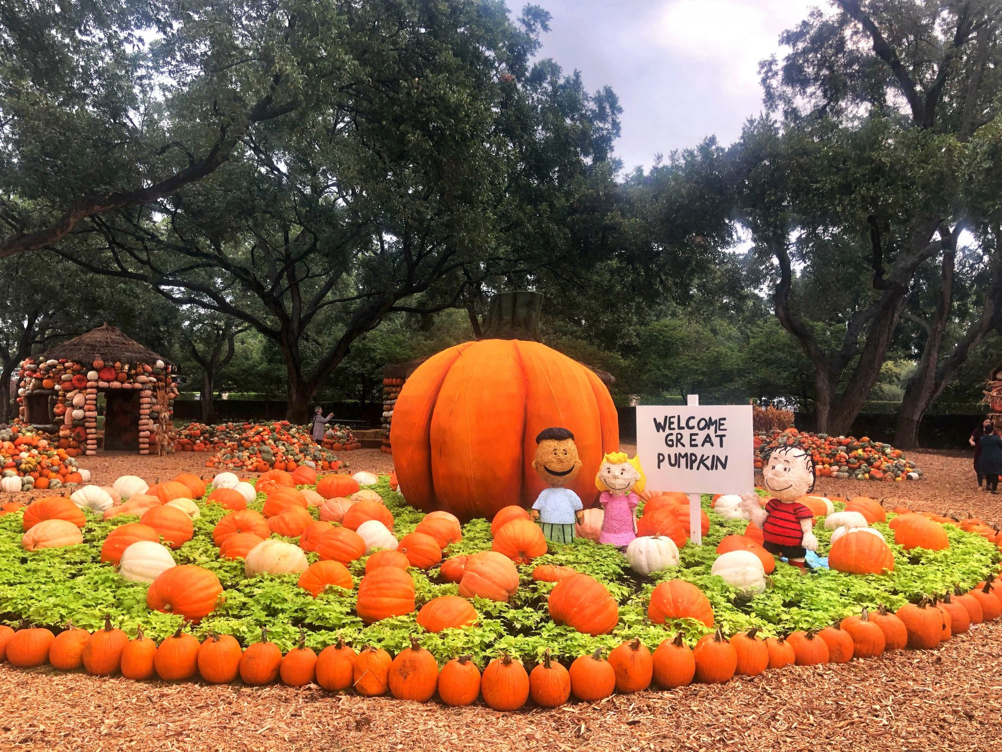 Charlie Brown Pumpkin Village