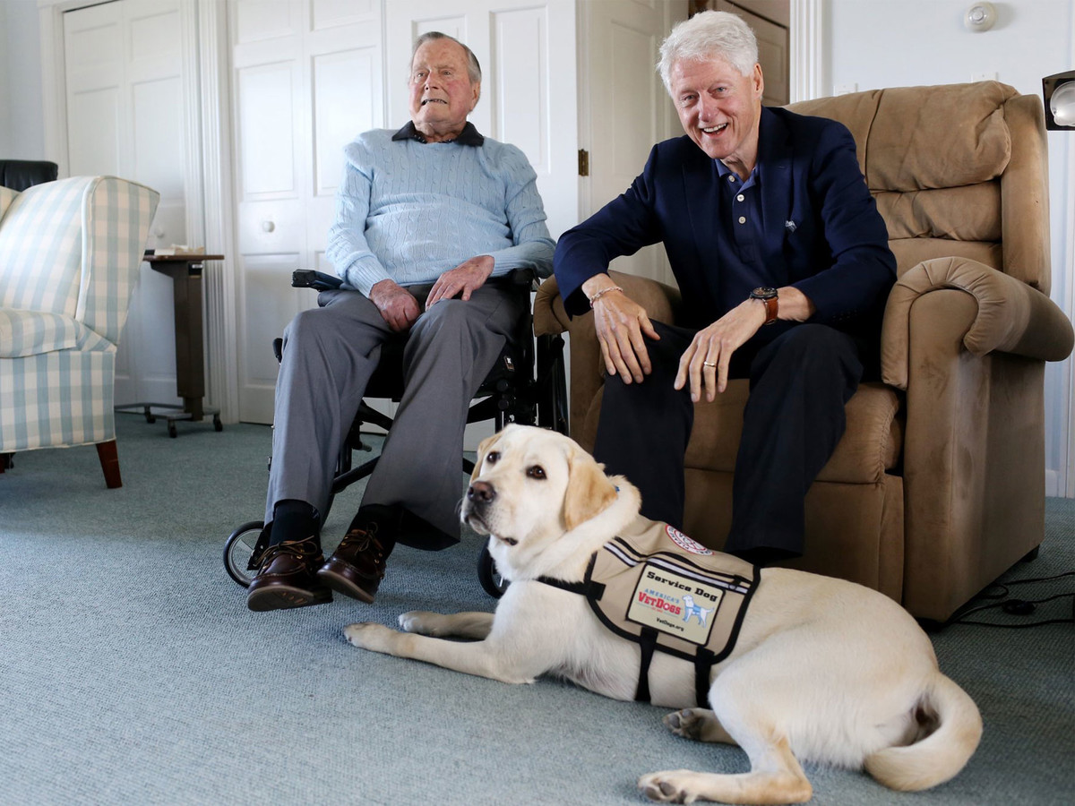 George H.W. Bush's Service Dog Sully Receives Public Service Award for Bringing Love and Joy george-bush-6