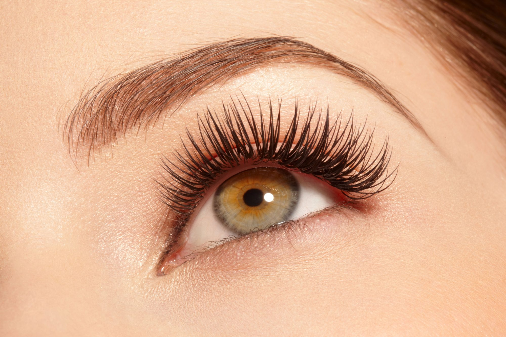 Woman's Eyelashes