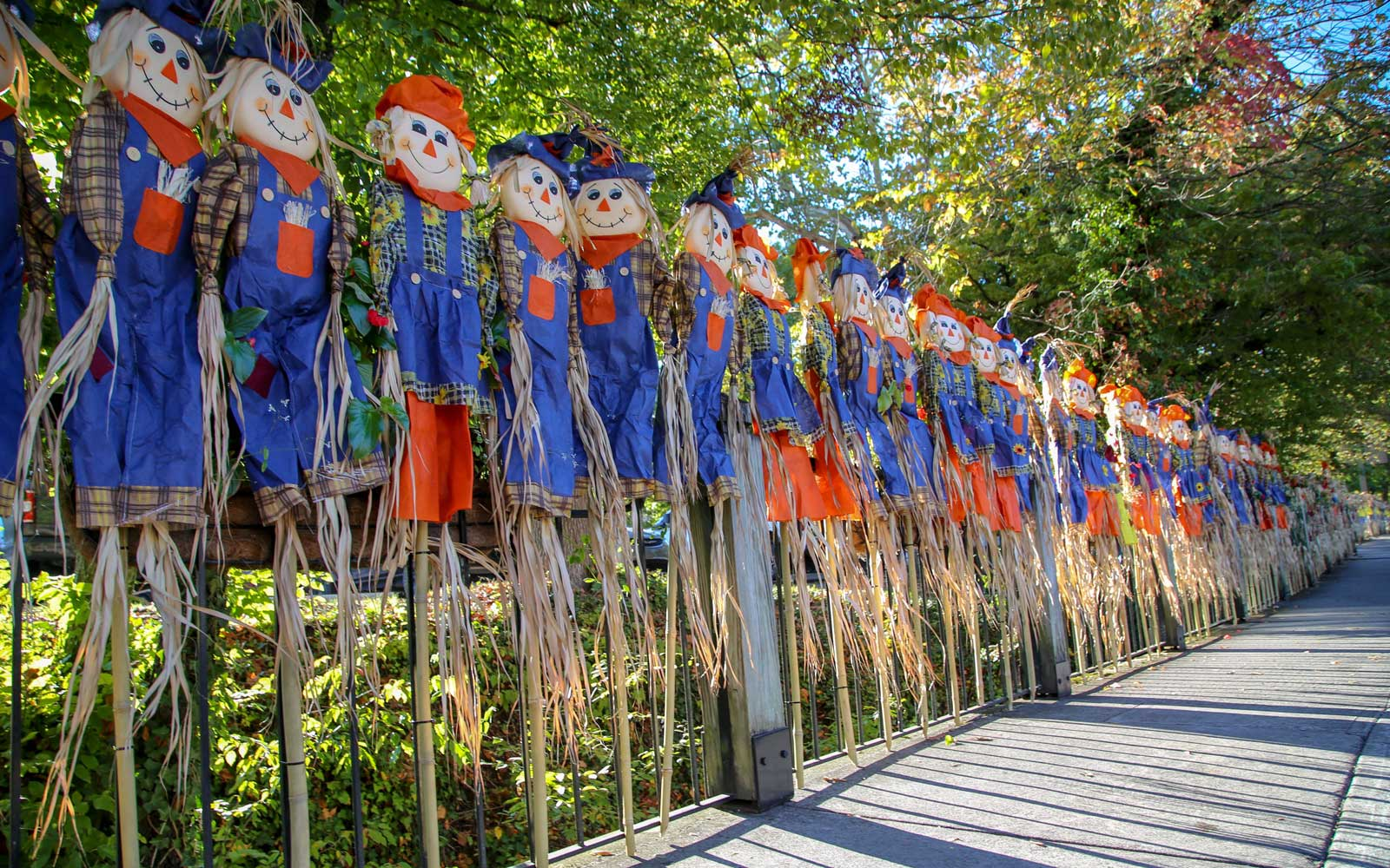 Counting Scarecrows in Gatlinburg, TN