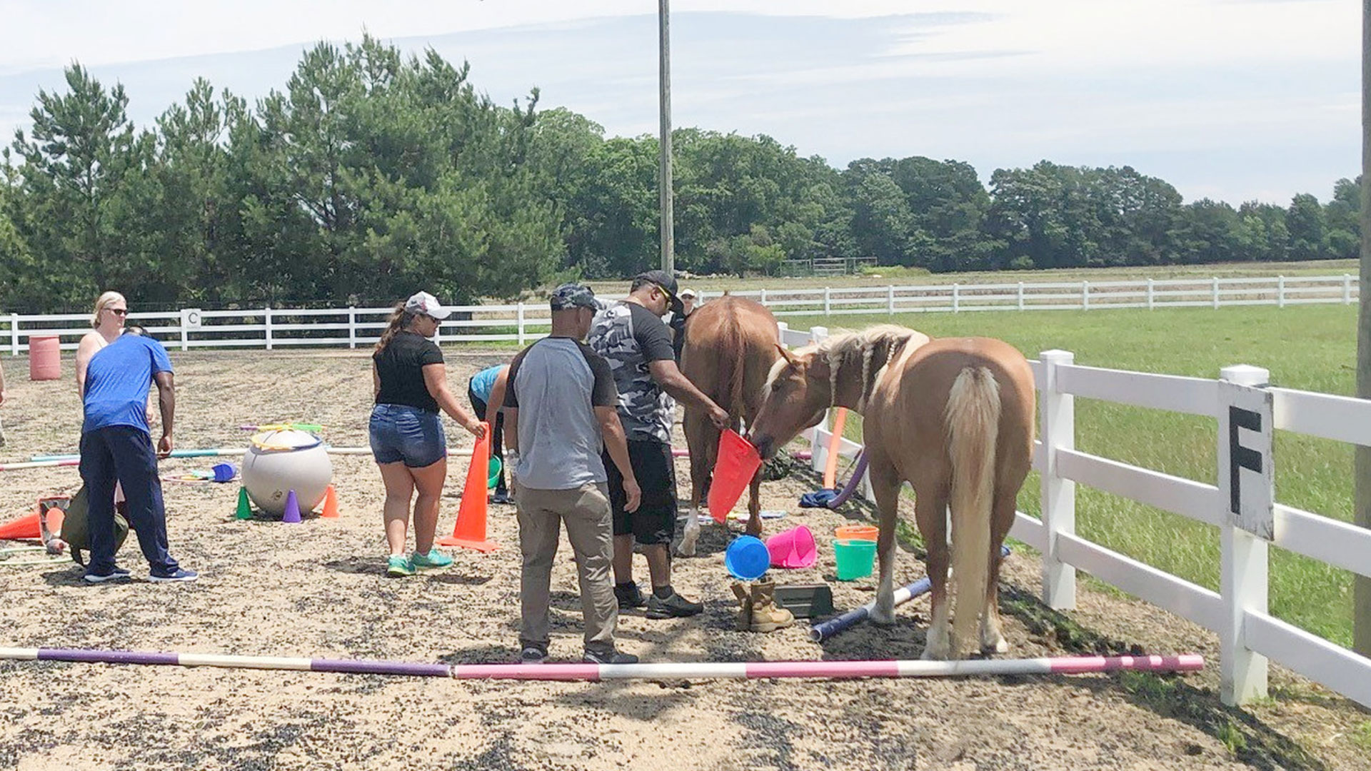 Wounded Warrior Project Equine Therapy