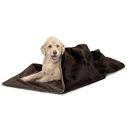 Thermal Dog Throw