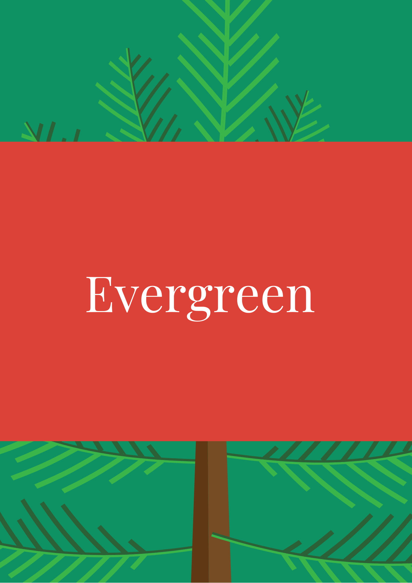 Evergreen Elf Names