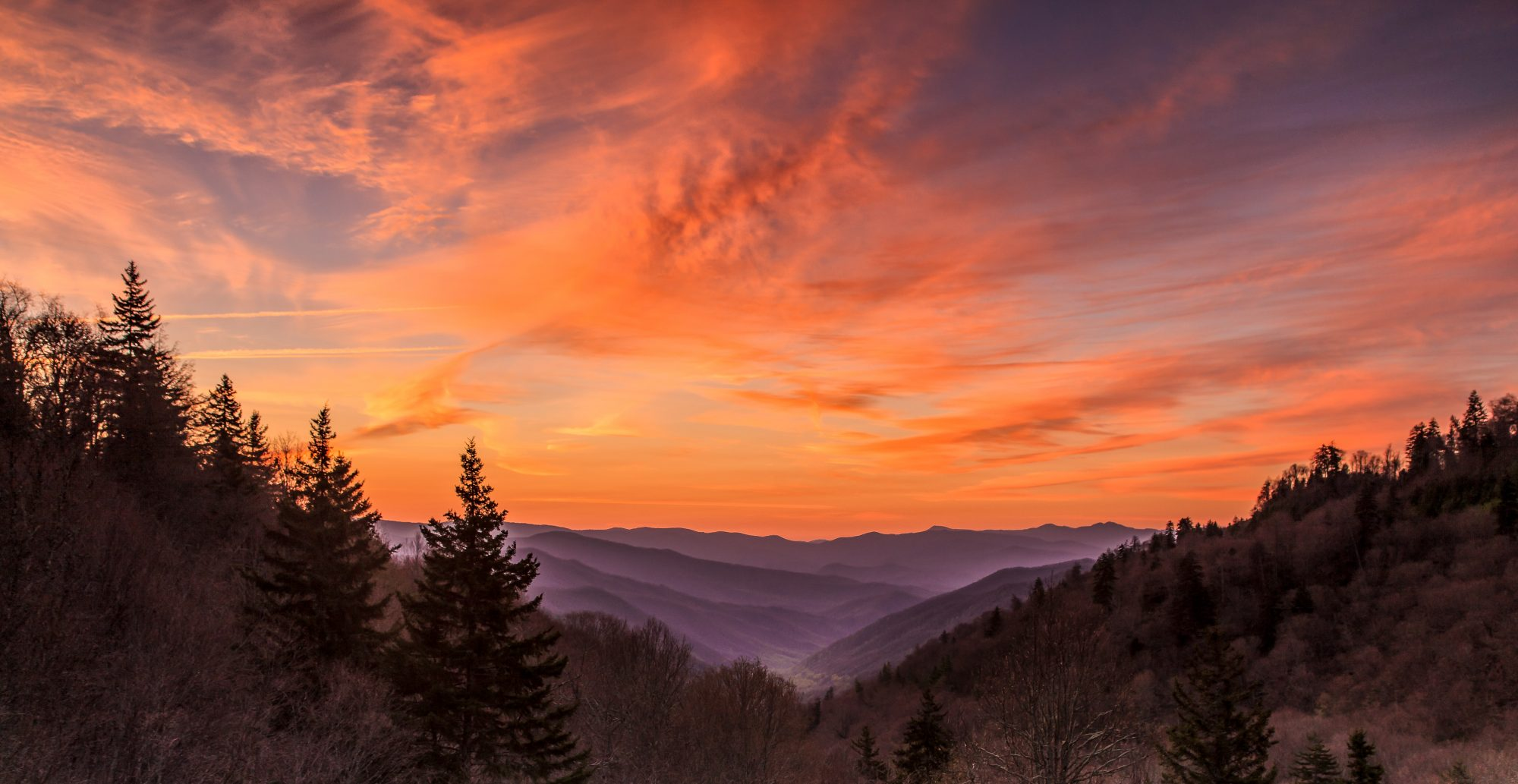 Great Smoky Mountains National Park Breaks Record in 2019 with 12.5 Million Visitors