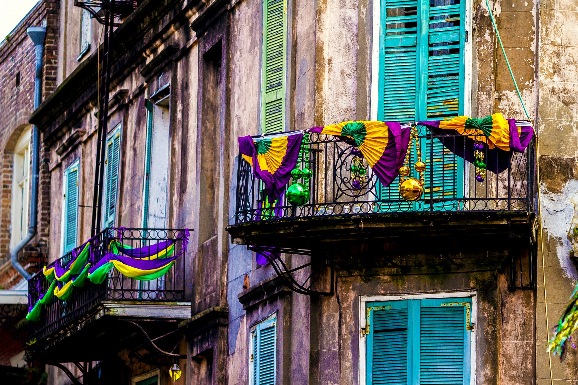 Decked Out for Mardi Gras