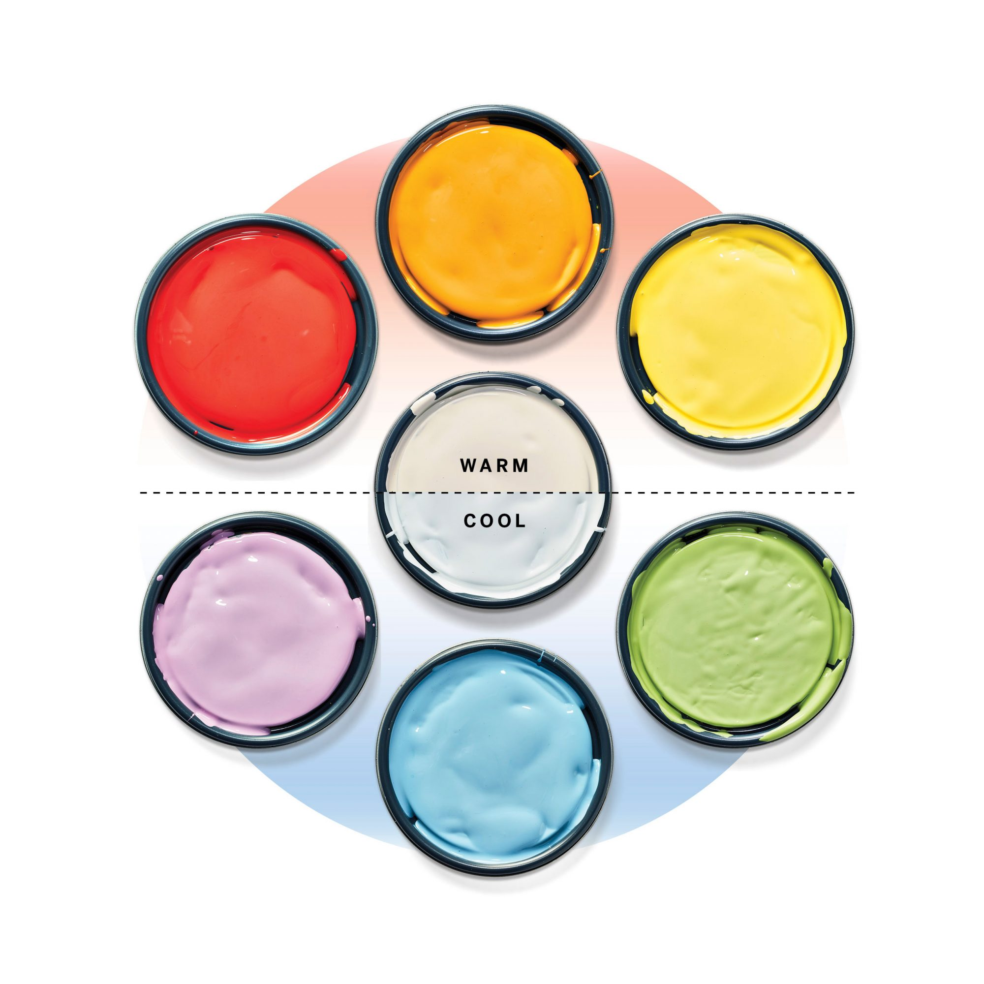 Warm and Cool Color Paint Wheel