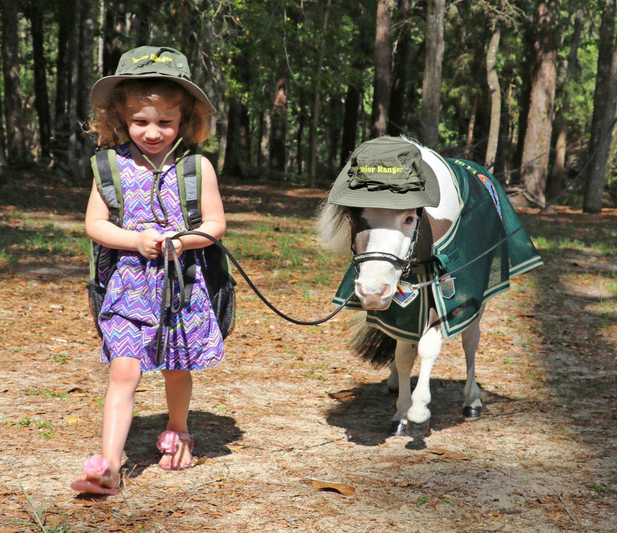 Pets to the Rescue: Gentle Carousel Miniature Therapy Horses
